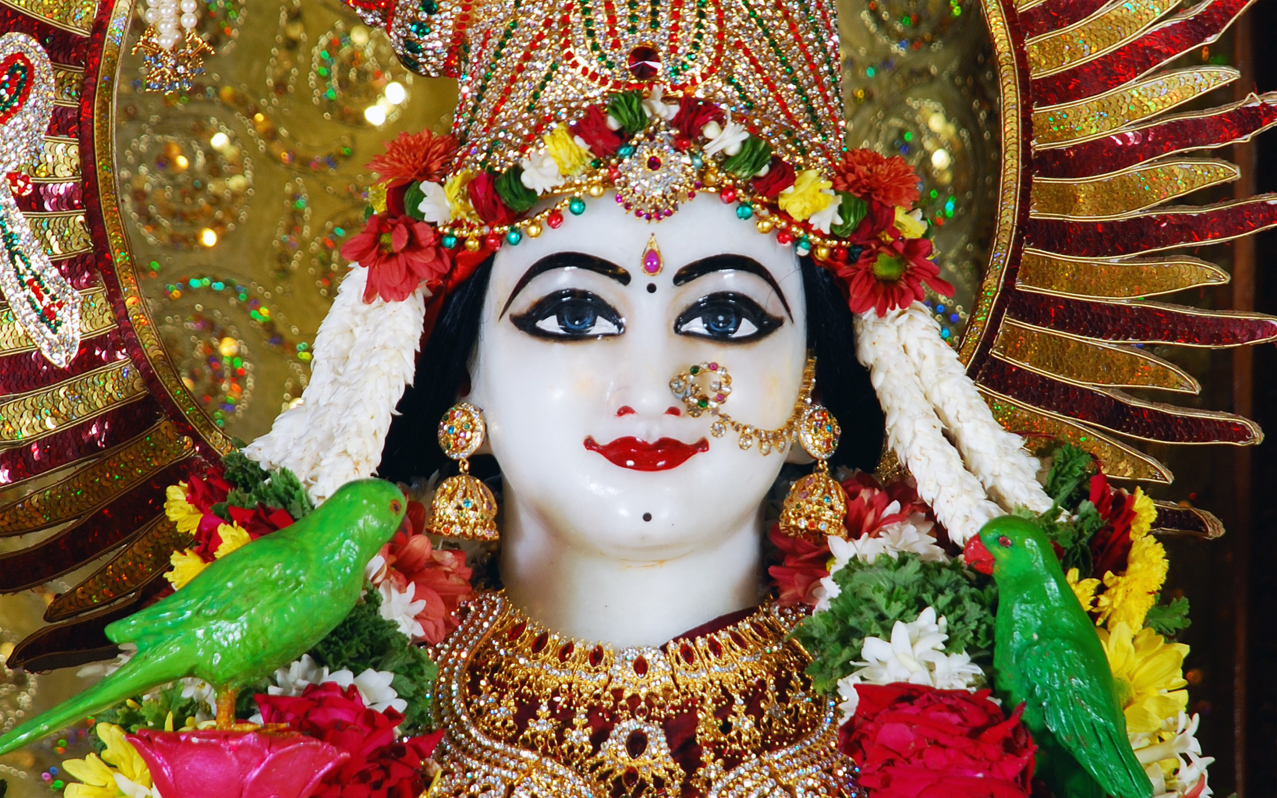 Sri Radha Close up Wallpaper (001) Size 2560x1600 Download