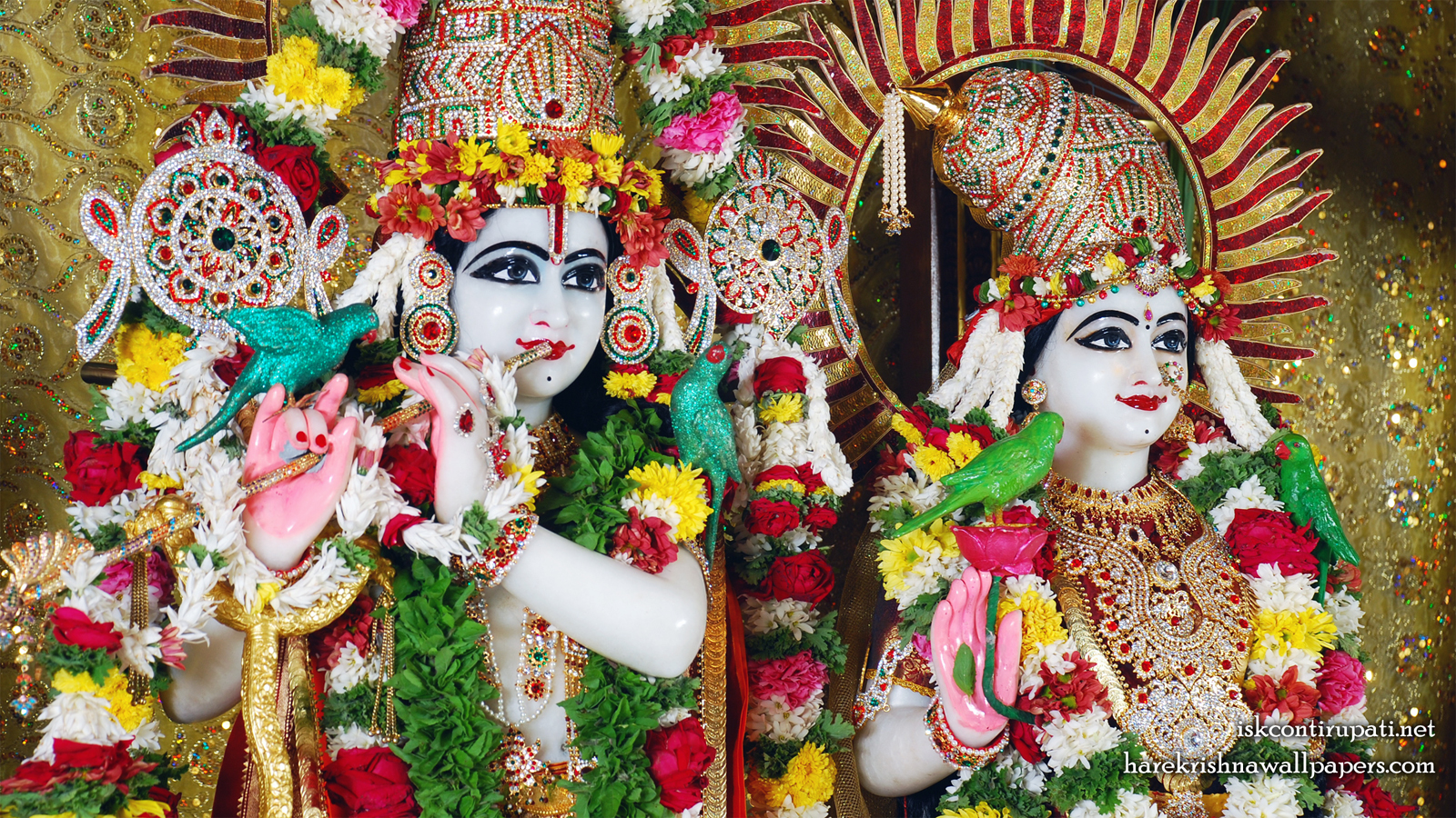 Sri Sri Radha Govinda Close up Wallpaper (001) Size 1600x900 Download