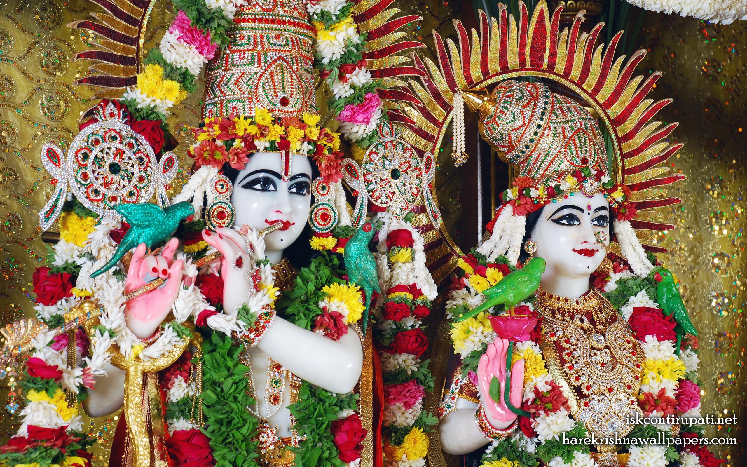 Sri Sri Radha Govinda Close up Wallpaper (001) Size 2560x1600 Download