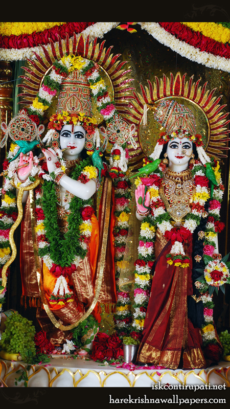 Sri Sri Radha Govinda Wallpaper (002) Size 450x800 Download