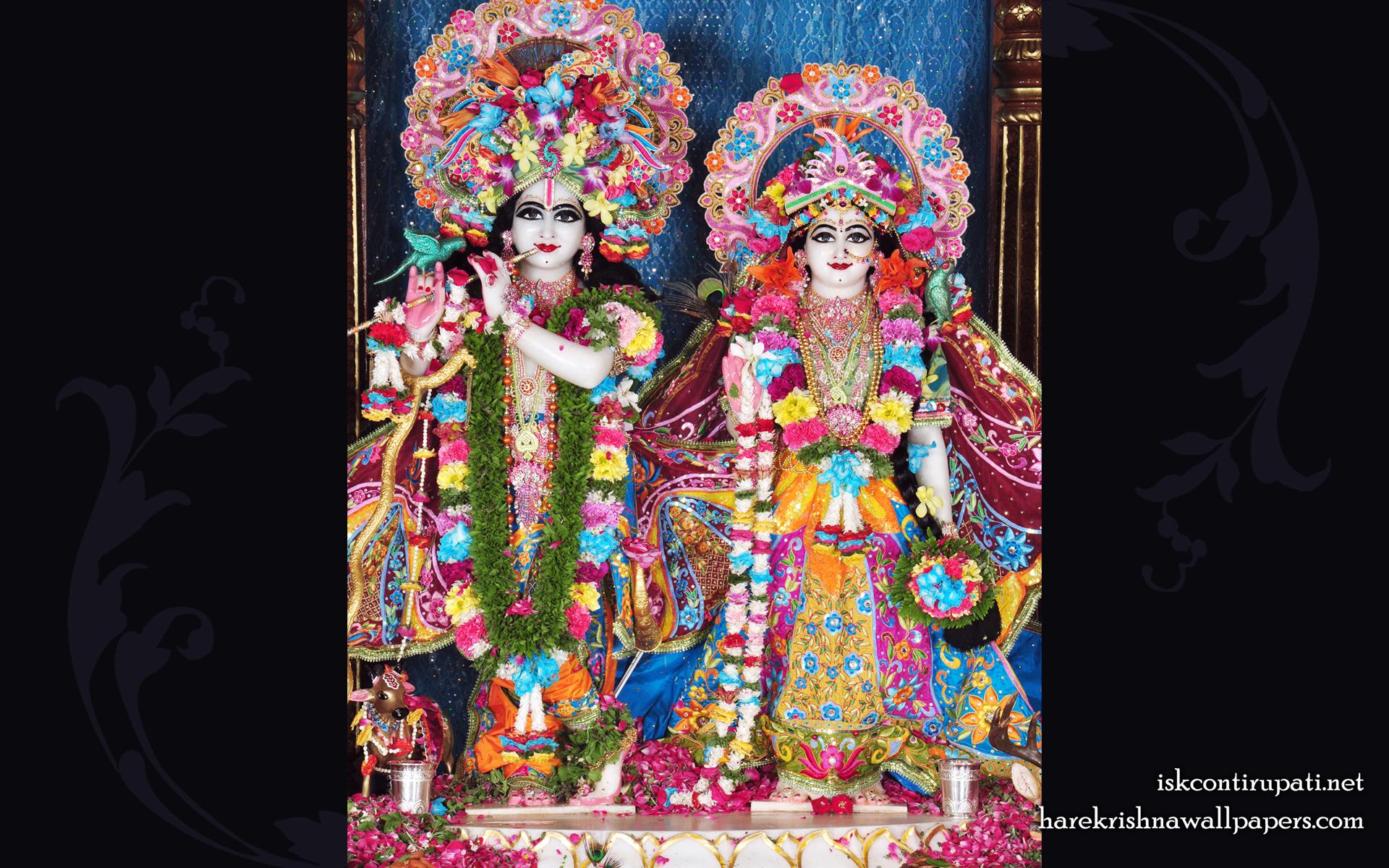 Sri Sri Radha Govinda Wallpaper (003) Size 1920x1200 Download
