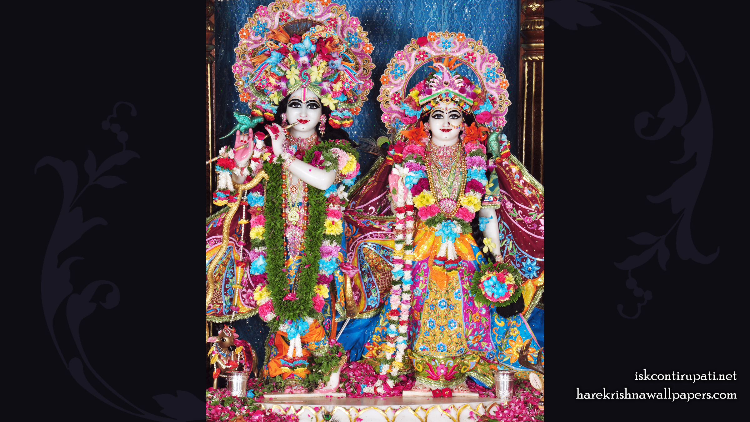 Sri Sri Radha Govinda Wallpaper (003) Size 2400x1350 Download
