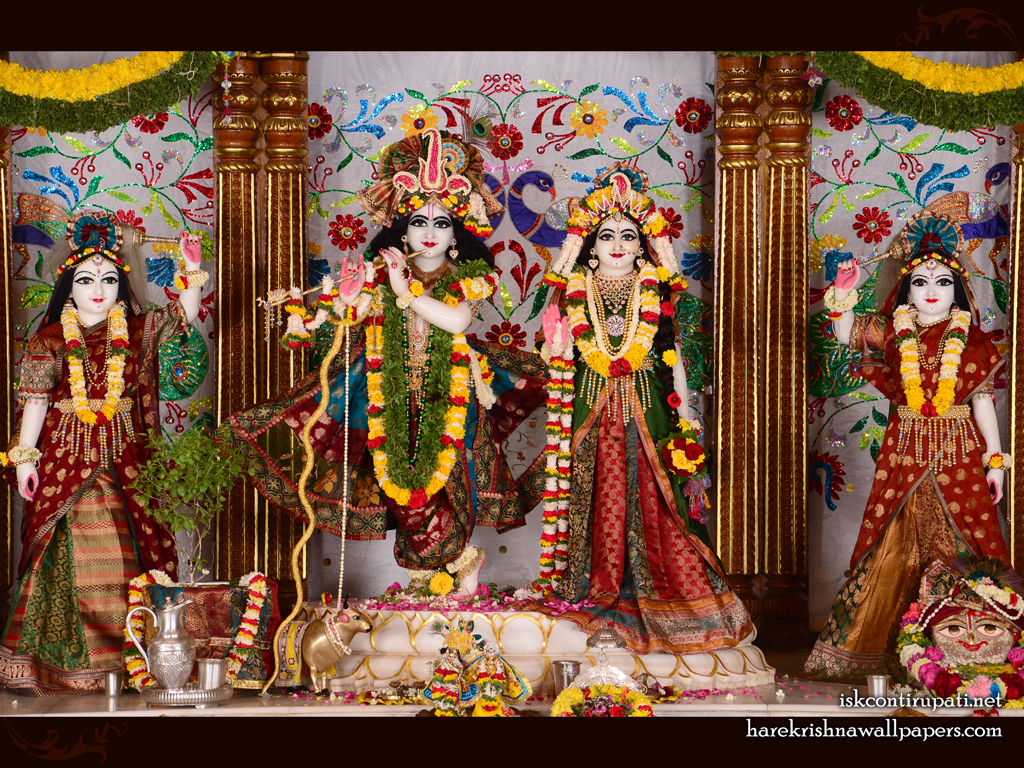 Sri Sri Radha Govinda Lalita Vishakha Wallpaper (003) Size 1024x768 Download