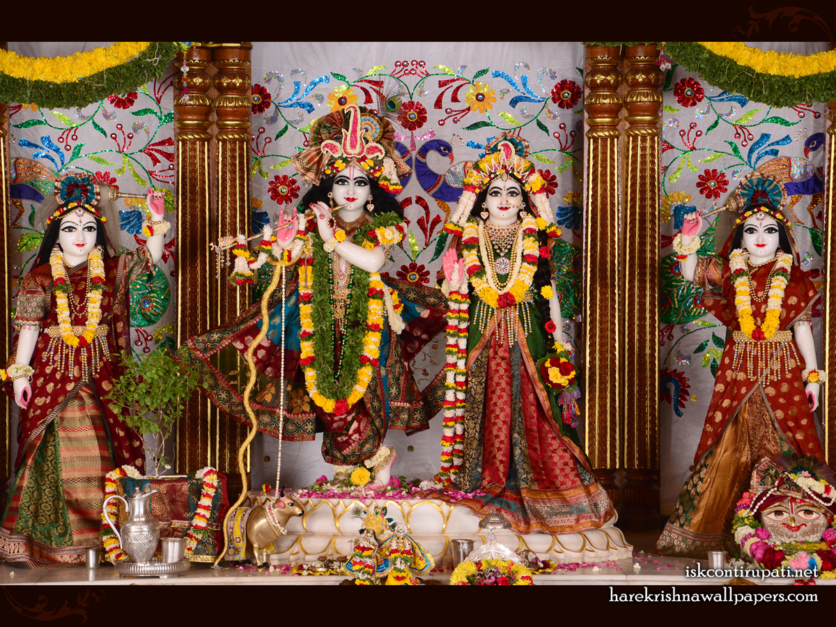 Sri Sri Radha Govinda Lalita Vishakha Wallpaper (003) Size 1200x900 Download