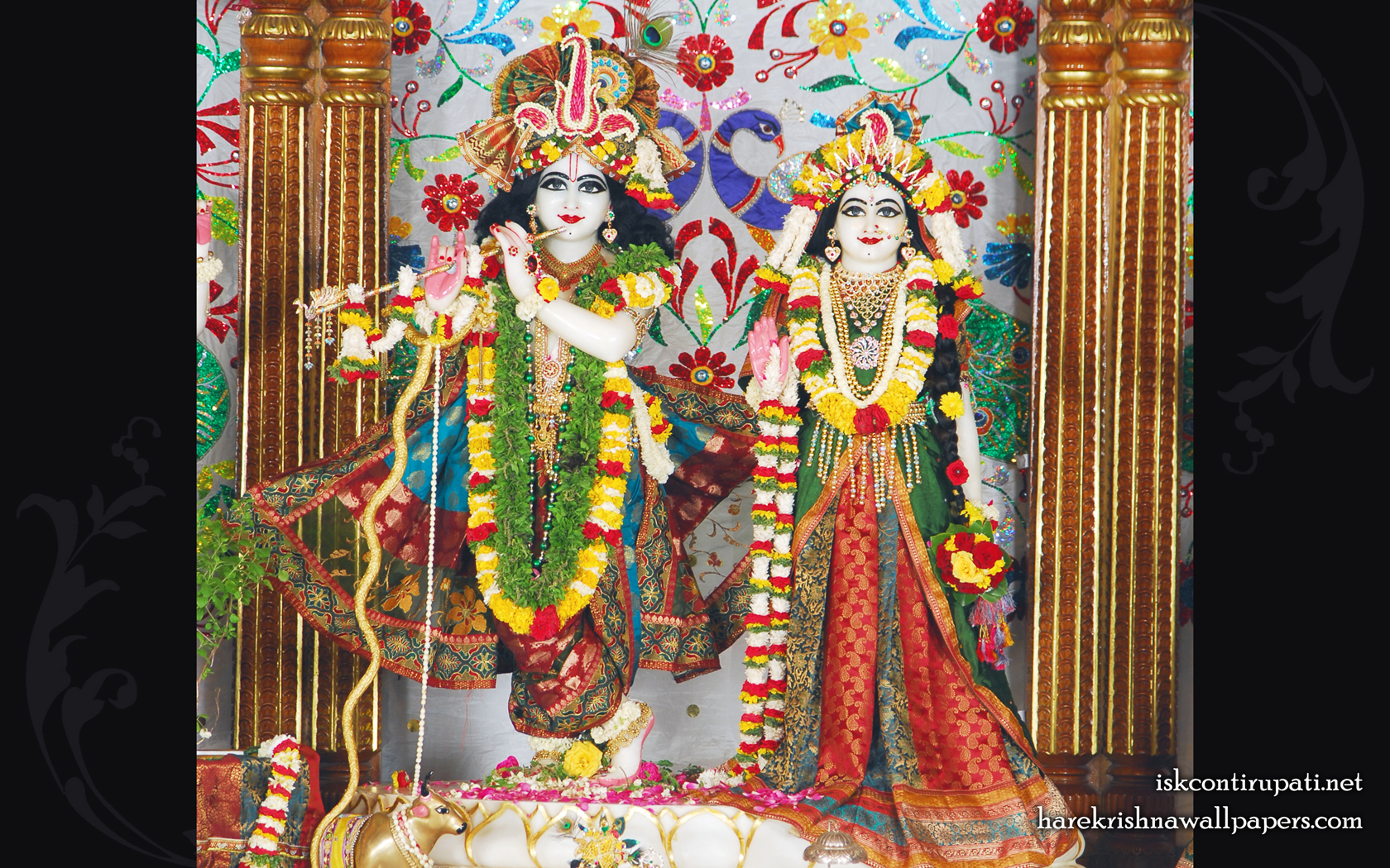 Sri Sri Radha Govinda Wallpaper (004) Size 1680x1050 Download