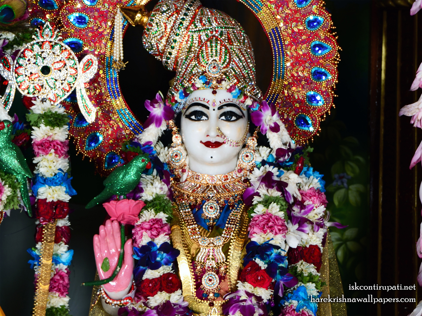 Sri Radha Close up Wallpaper (005) Size 1400x1050 Download
