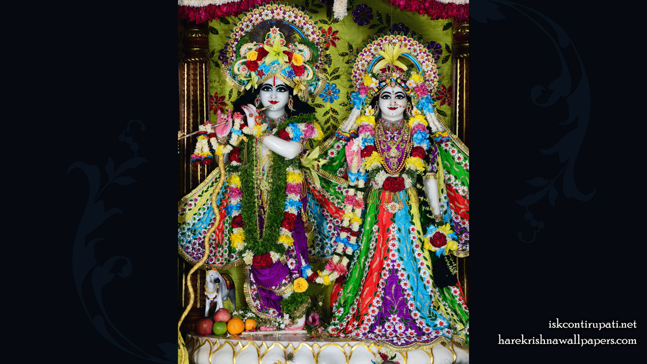 Sri Sri Radha Govinda Wallpaper (005) Size 1280x720 Download