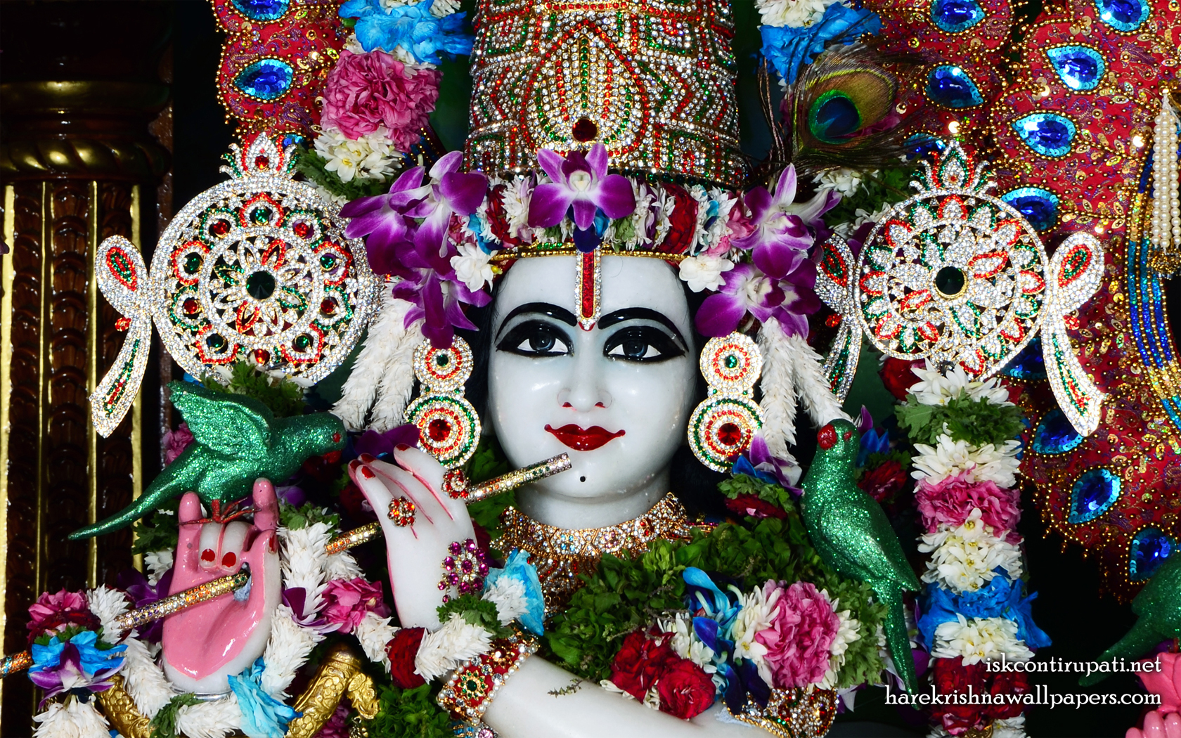 Sri Govinda Close up Wallpaper (006) Size 1680x1050 Download
