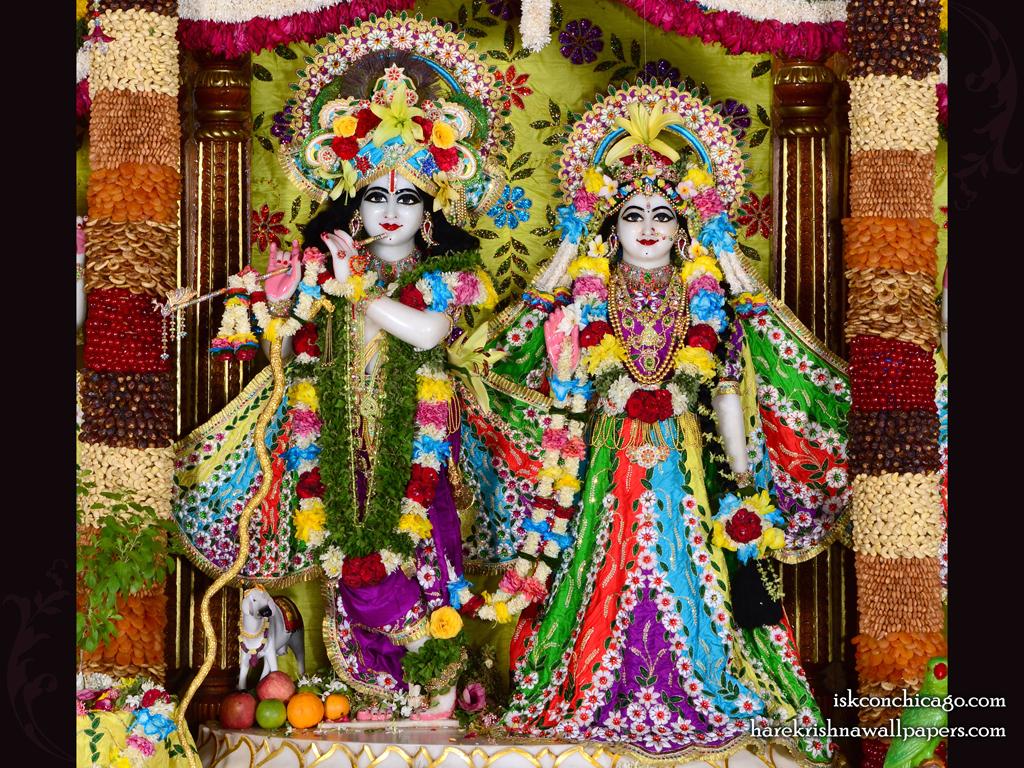 Sri Sri Radha Govinda Wallpaper (006) Size 1024x768 Download
