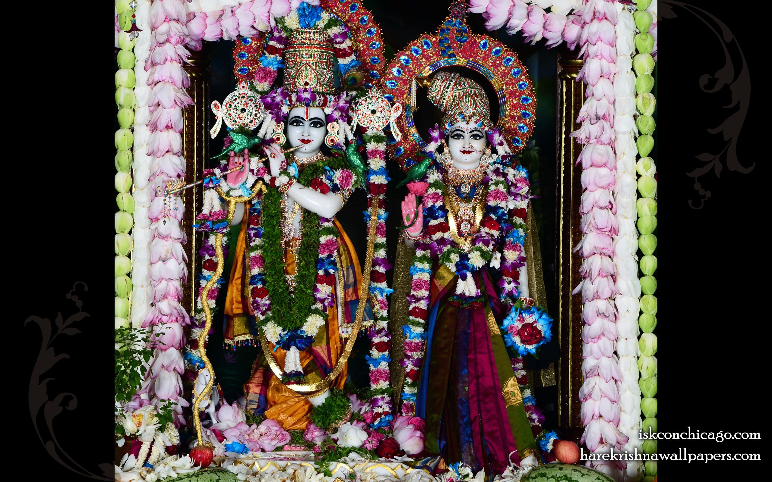 Sri Sri Radha Govinda Wallpaper (008) Size 2560x1600 Download