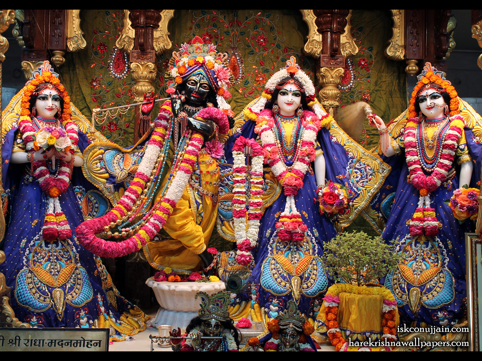 Sri Sri Radha Madanmohan Lalita Vishakha Wallpaper (002) Size 1920x1440 Download
