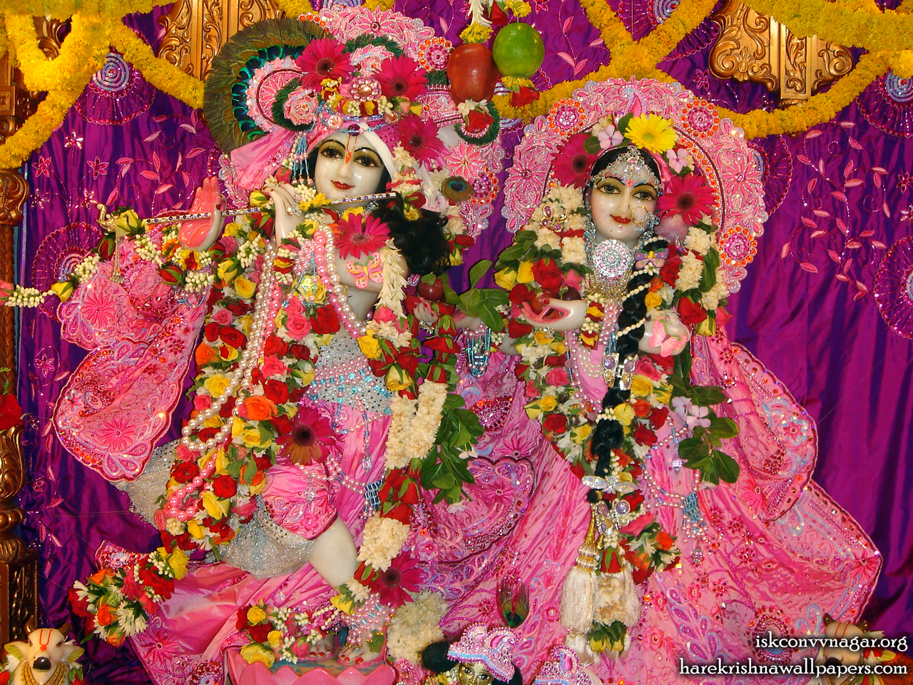 Sri Sri Radha Giridhari Wallpaper (002) Size 1280x960 Download
