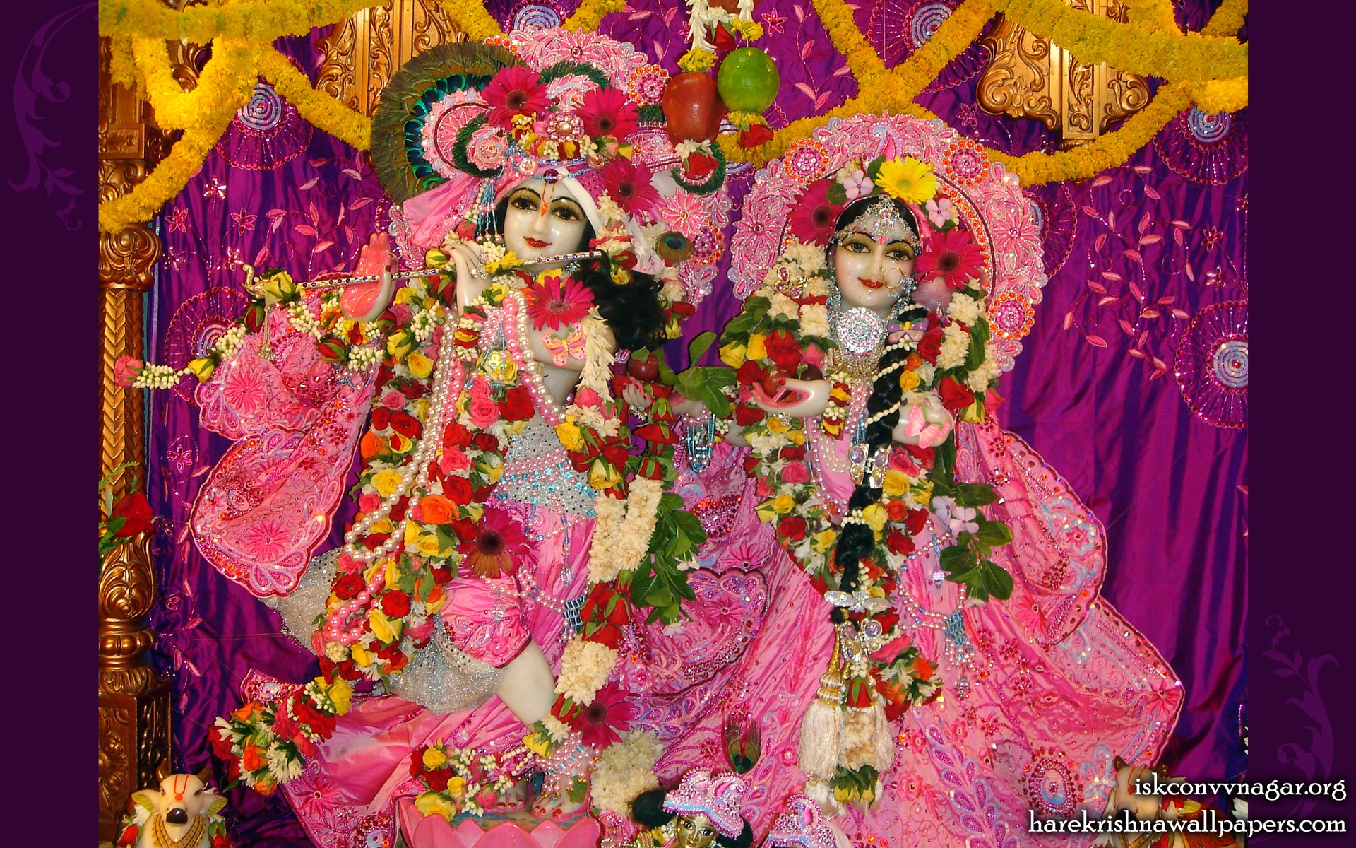 Sri Sri Radha Giridhari Wallpaper (002) Size 1920x1200 Download