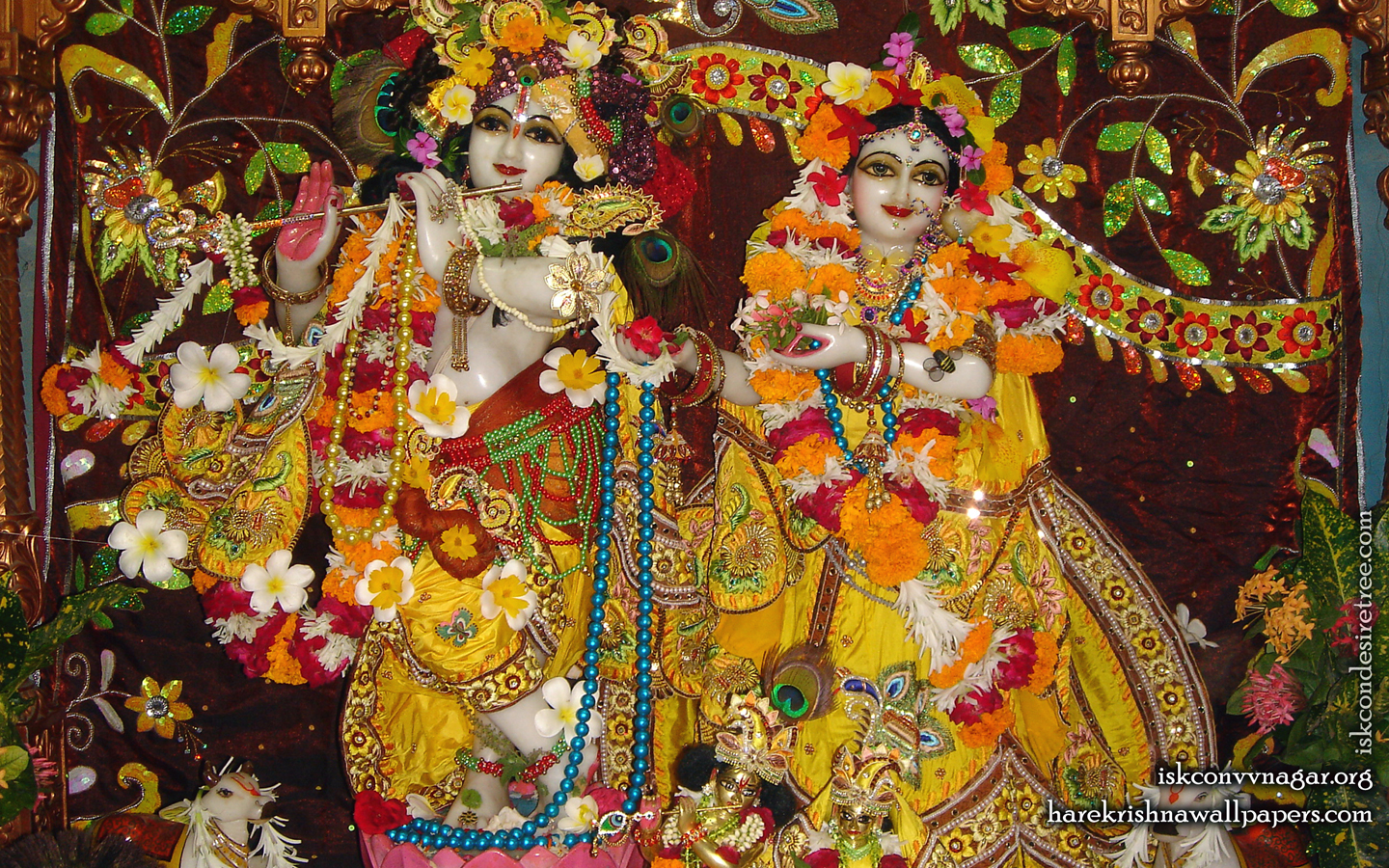 Sri Sri Radha Giridhari Wallpaper (006) Size 1440x900 Download