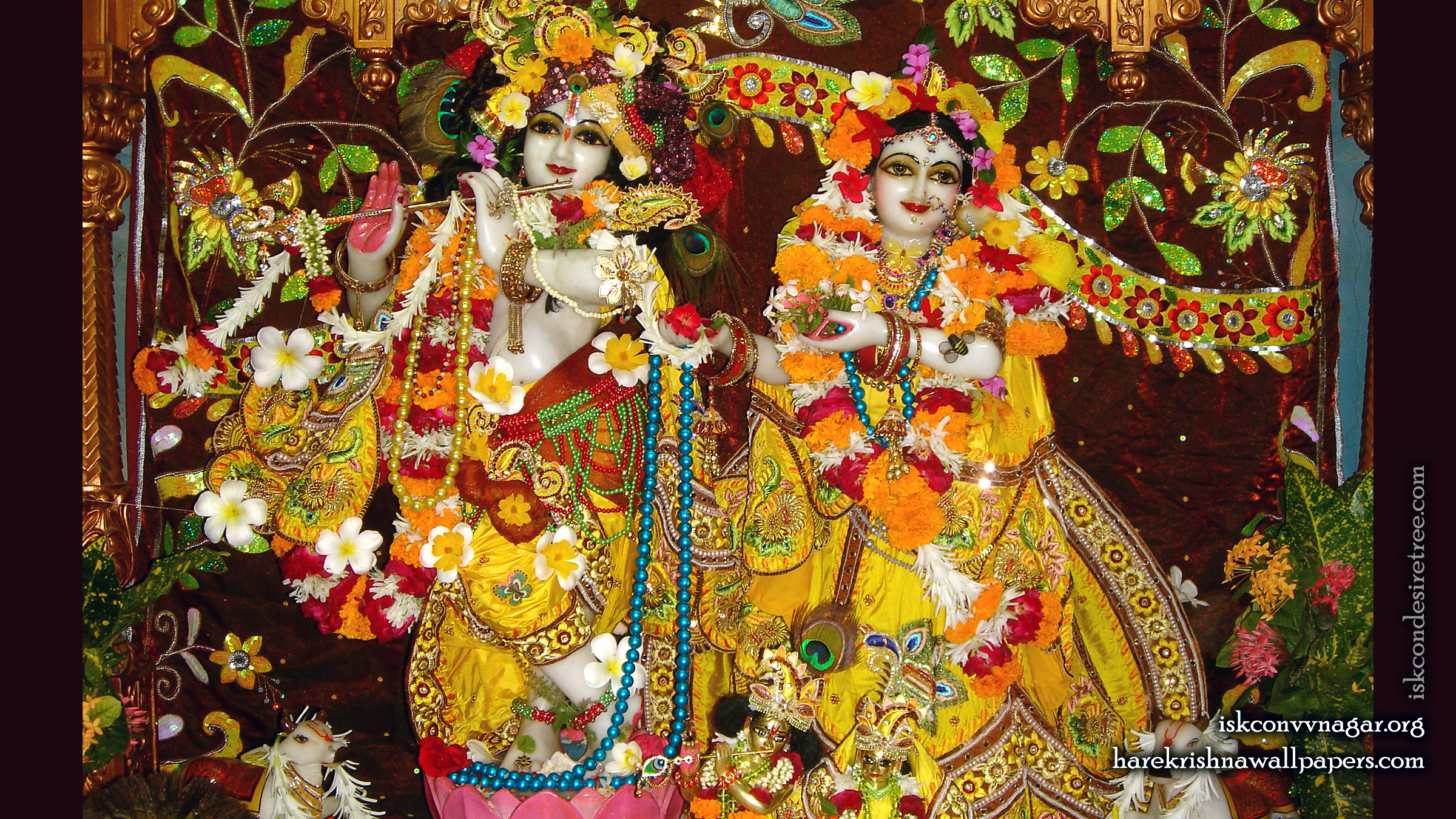Sri Sri Radha Giridhari Wallpaper (006) Size 2400x1350 Download