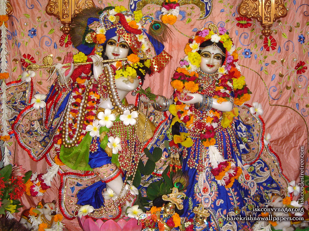 Sri Sri Radha Giridhari Wallpaper (007) Size 1024x768 Download