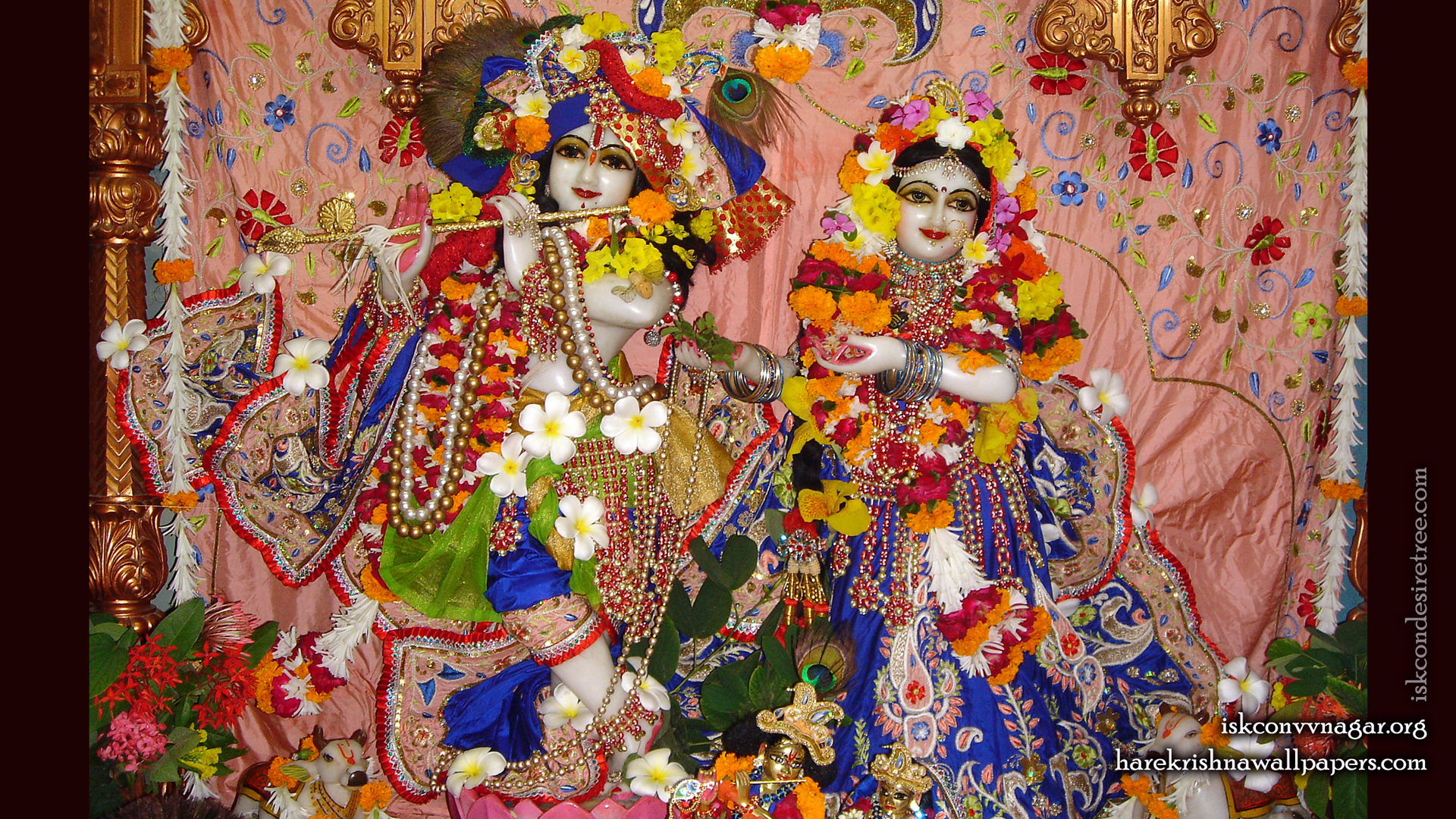 Sri Sri Radha Giridhari Wallpaper (007) Size 1920x1080 Download