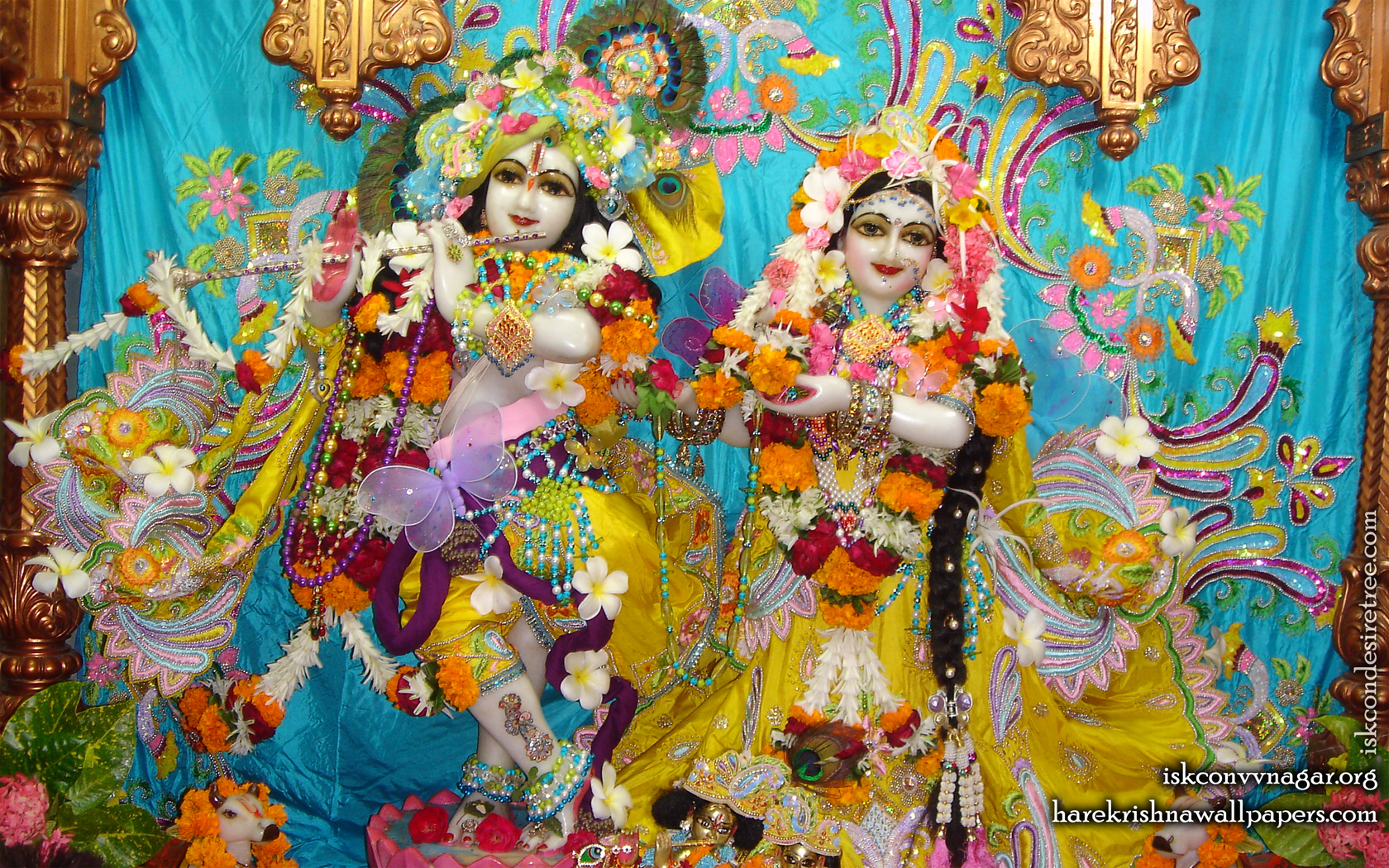 Sri Sri Radha Giridhari Wallpaper (008) Size 1680x1050 Download