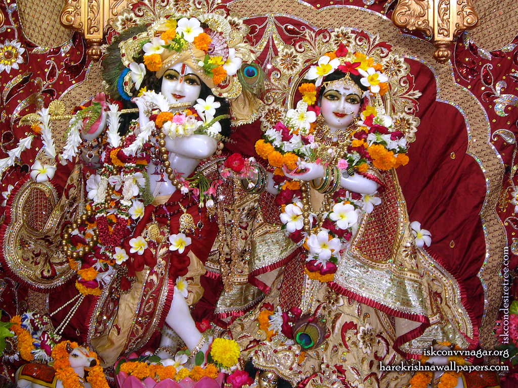Sri Sri Radha Giridhari Wallpaper (009) Size 1024x768 Download