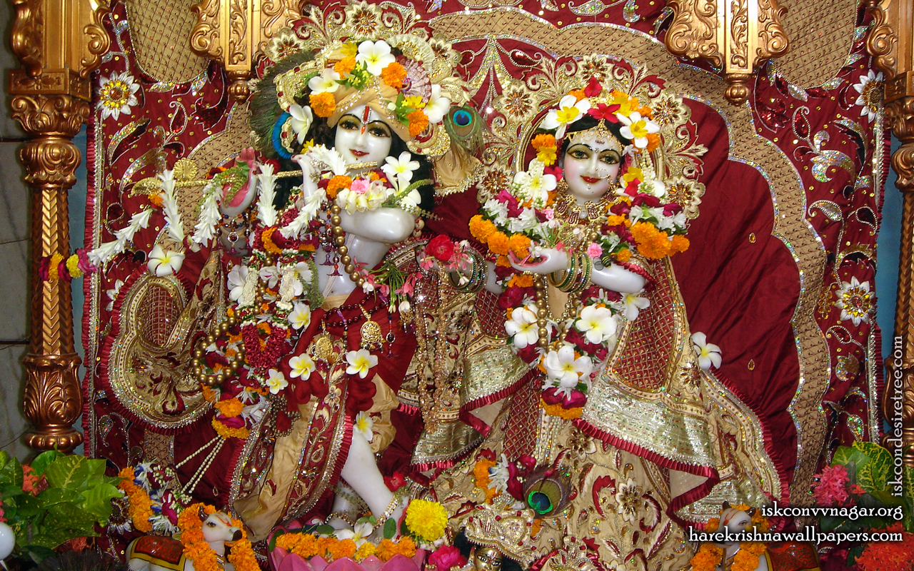 Sri Sri Radha Giridhari Wallpaper (009) Size 1280x800 Download