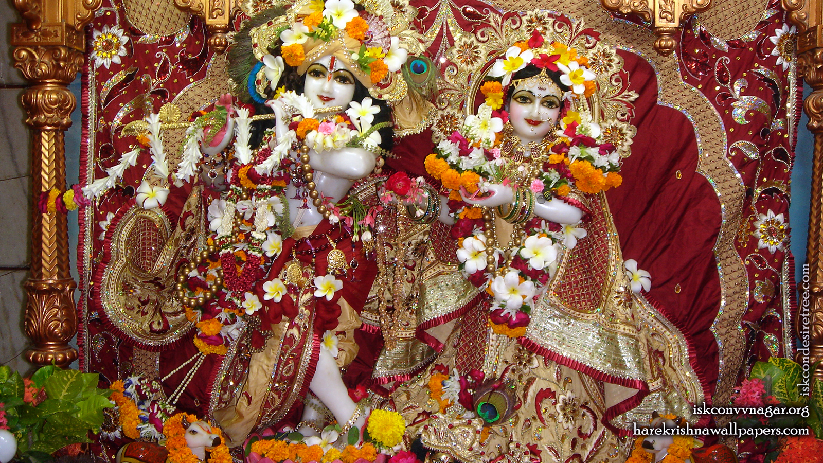 Sri Sri Radha Giridhari Wallpaper (009) Size 1600x900 Download