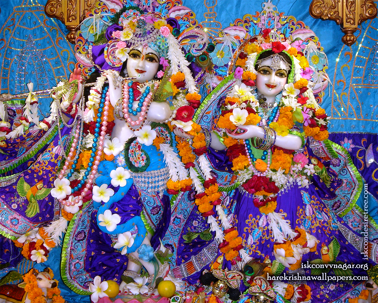 Sri Sri Radha Giridhari Wallpaper (010) Size 1280x1024 Download