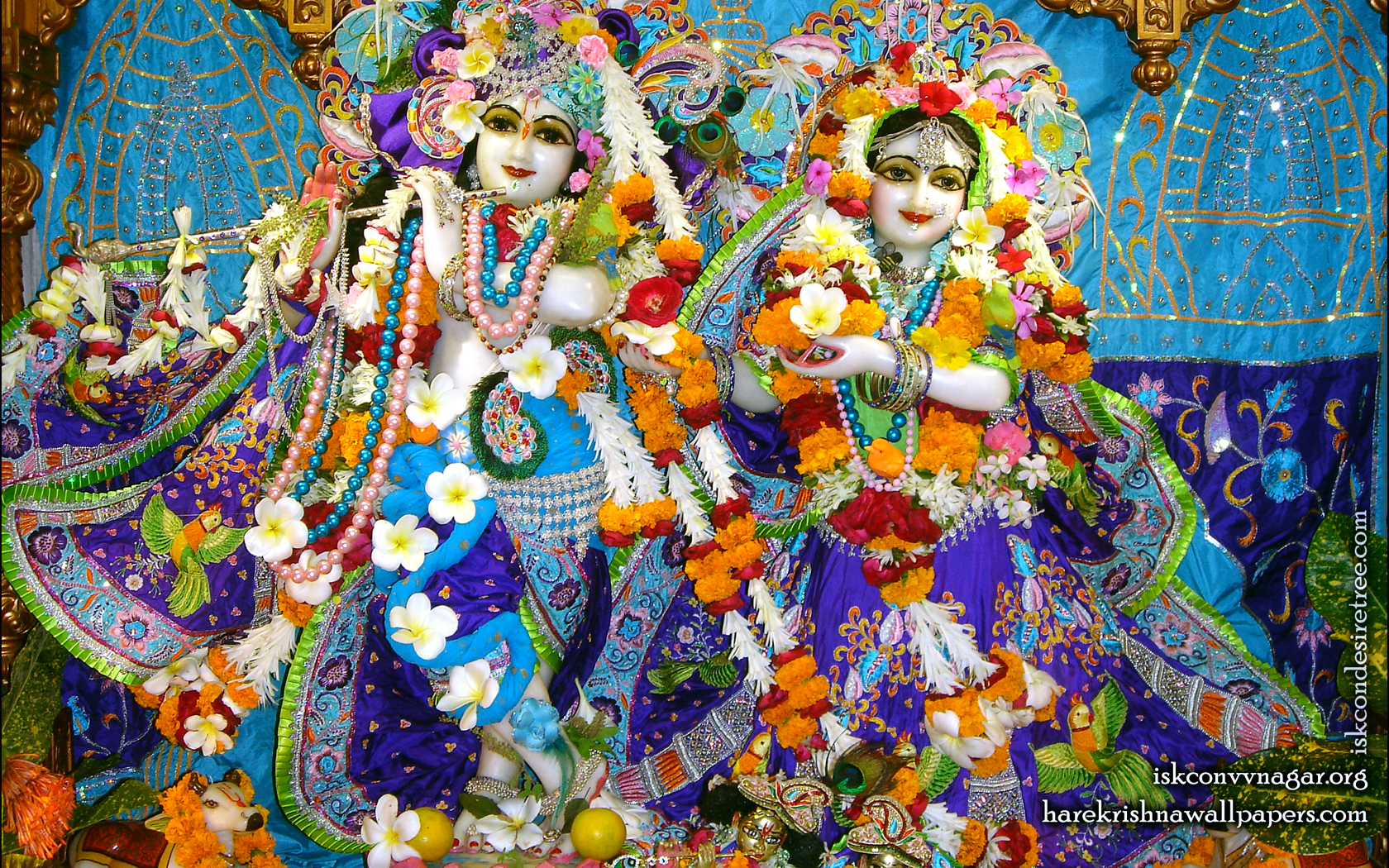 Sri Sri Radha Giridhari Wallpaper (010) Size 1680x1050 Download