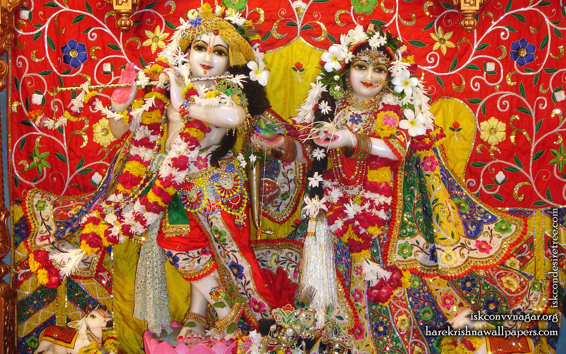 Sri Sri Radha Giridhari Wallpaper (013) Size 1920x1200 Download