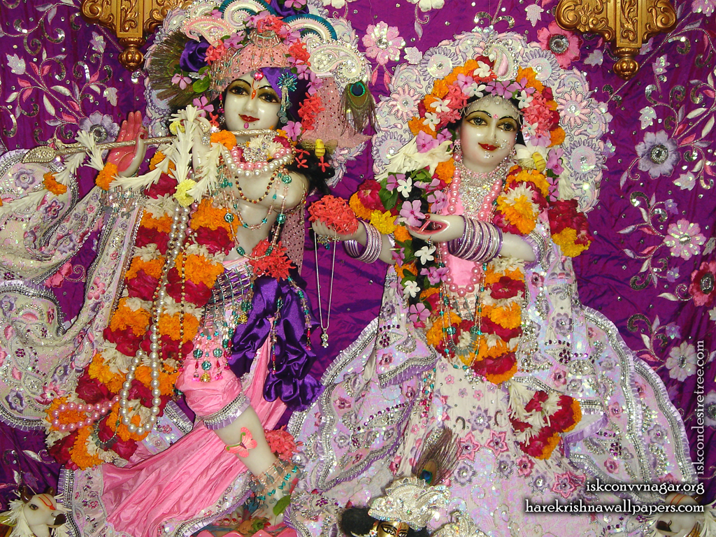 Sri Sri Radha Giridhari Wallpaper (014) Size 1024x768 Download
