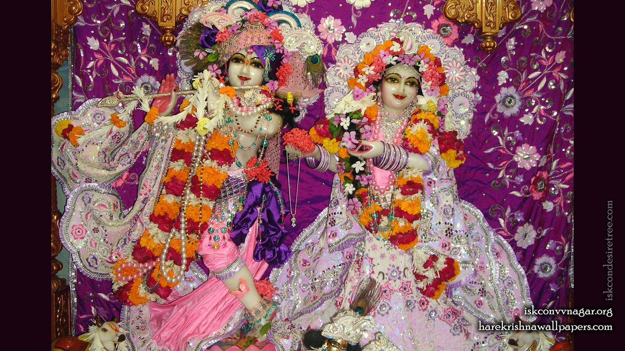 Sri Sri Radha Giridhari Wallpaper (014) Size 1280x720 Download