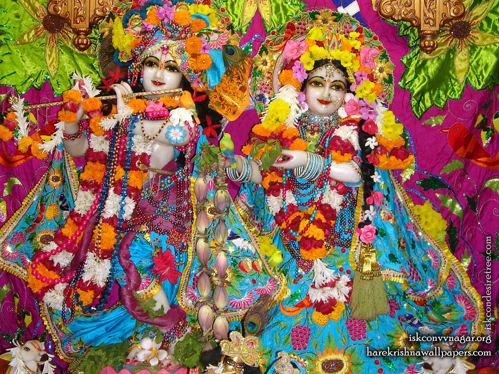 Sri Sri Radha Giridhari Wallpaper (015) Size 1024x768 Download