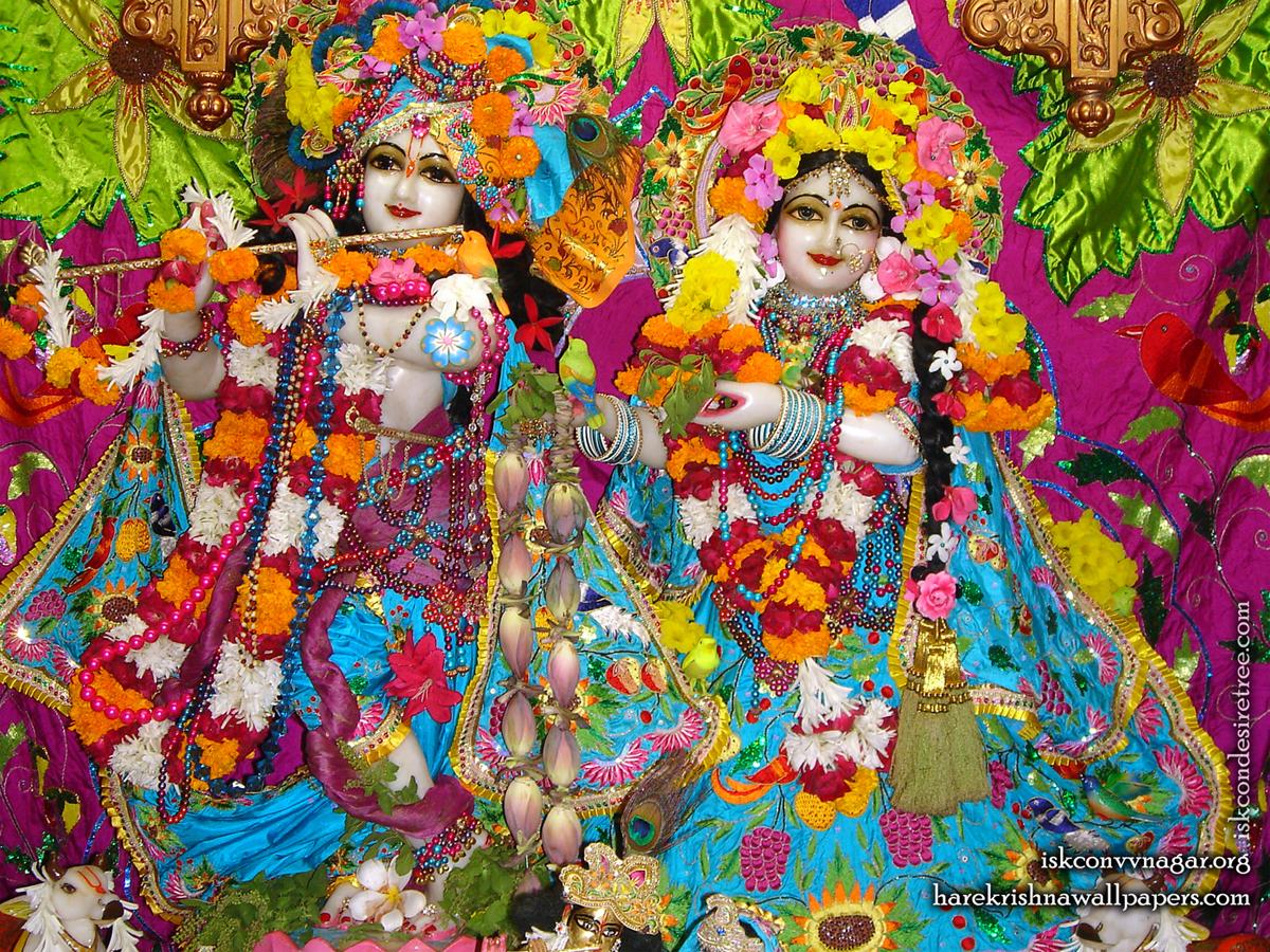 Sri Sri Radha Giridhari Wallpaper (015) Size 1200x900 Download