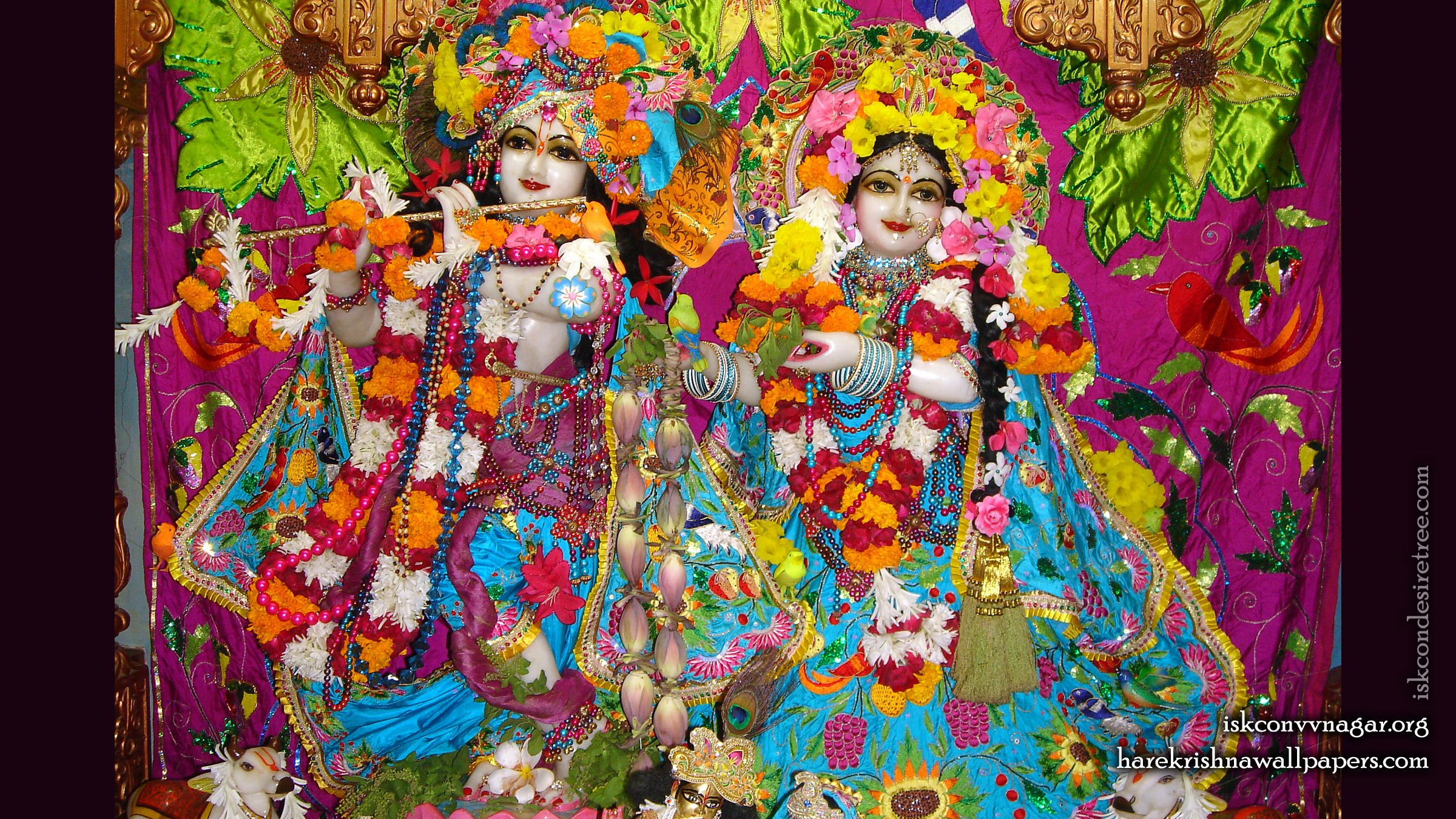 Sri Sri Radha Giridhari Wallpaper (015) Size 2400x1350 Download