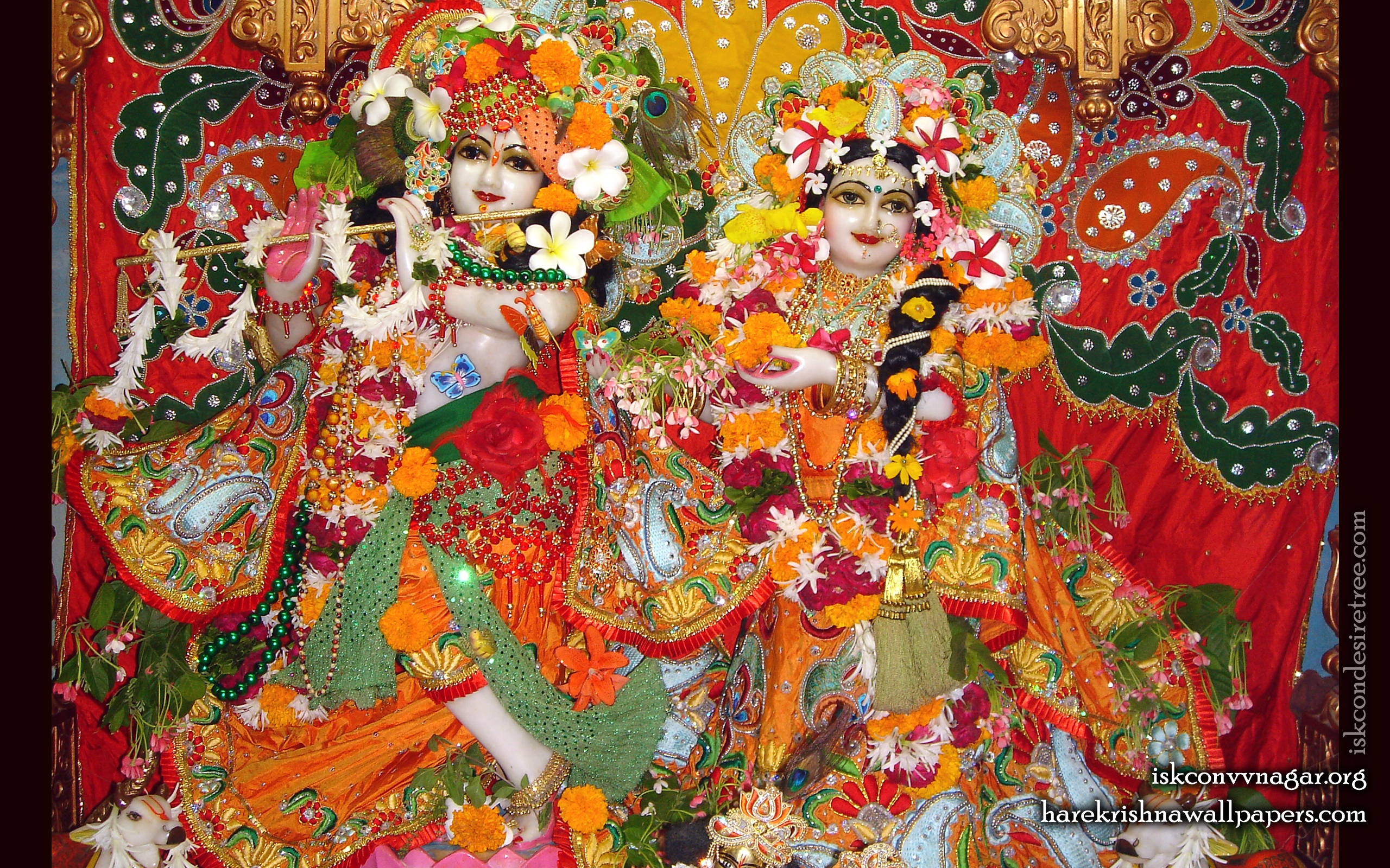 Sri Sri Radha Giridhari Wallpaper (016) Size 2560x1600 Download