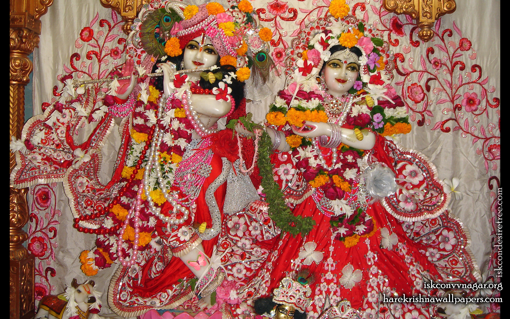Sri Sri Radha Giridhari Wallpaper (018) Size 1680x1050 Download