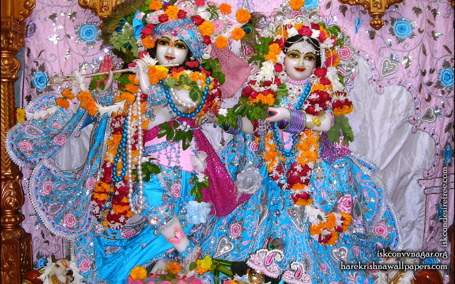 Sri Sri Radha Giridhari Wallpaper (019) Size 1920x1200 Download