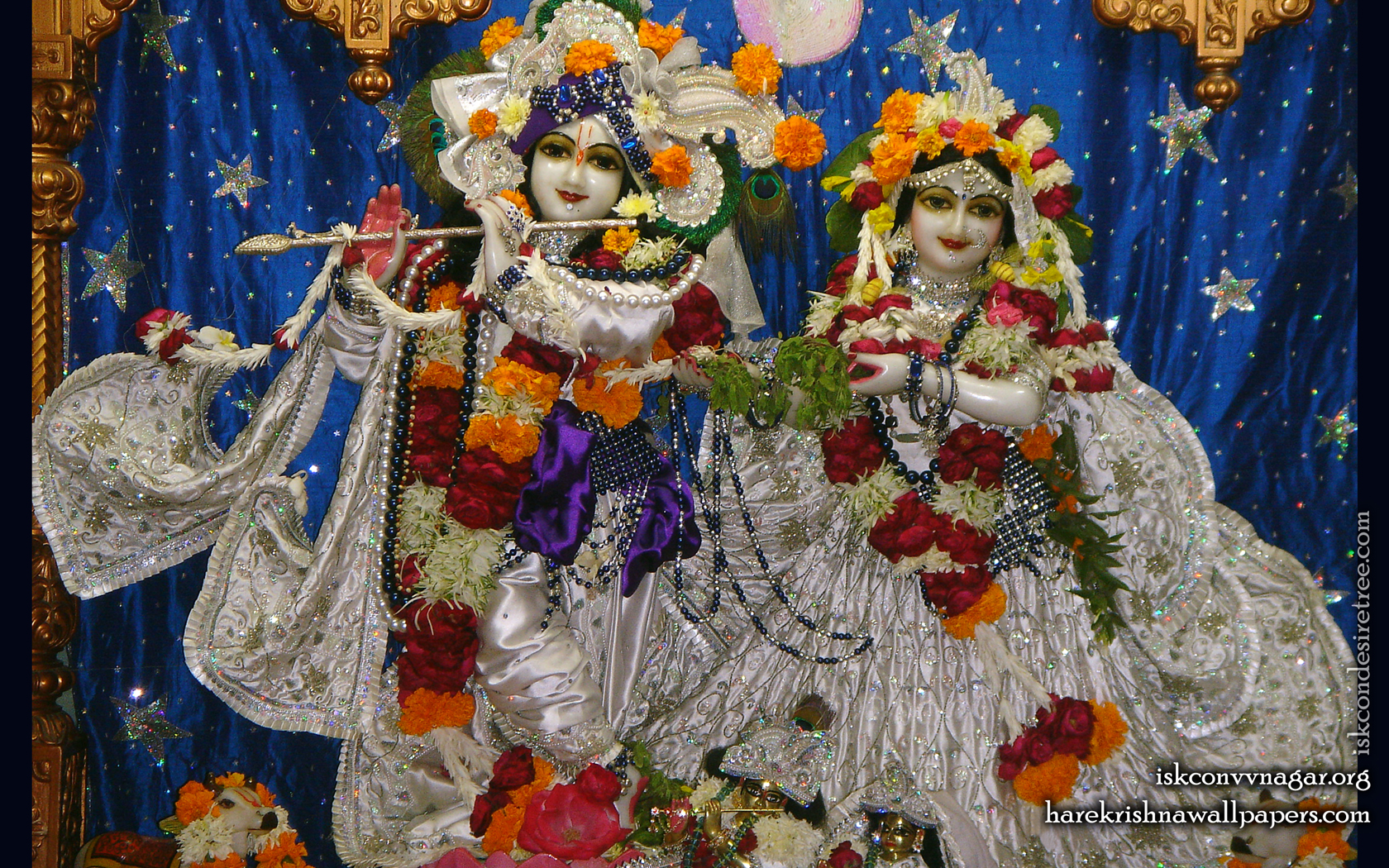 Sri Sri Radha Giridhari Wallpaper (020) Size 1680x1050 Download