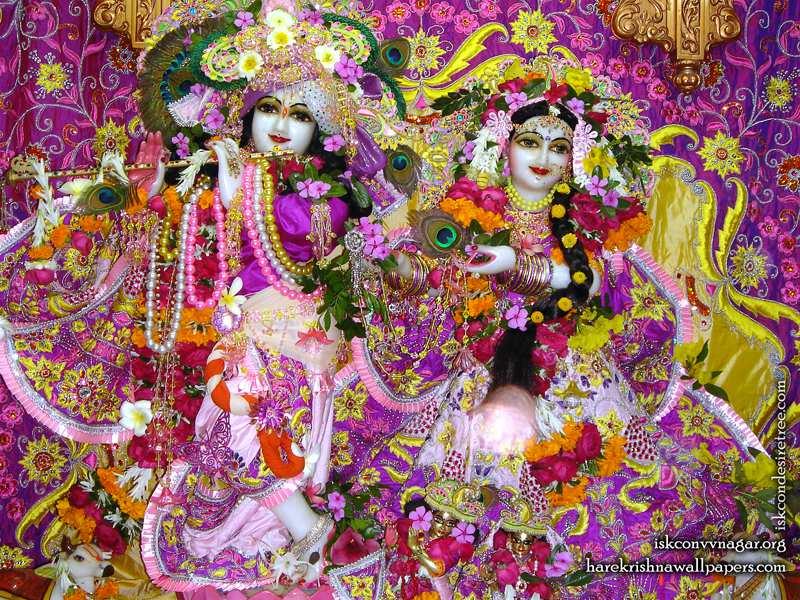 Sri Sri Radha Giridhari Wallpaper (021)