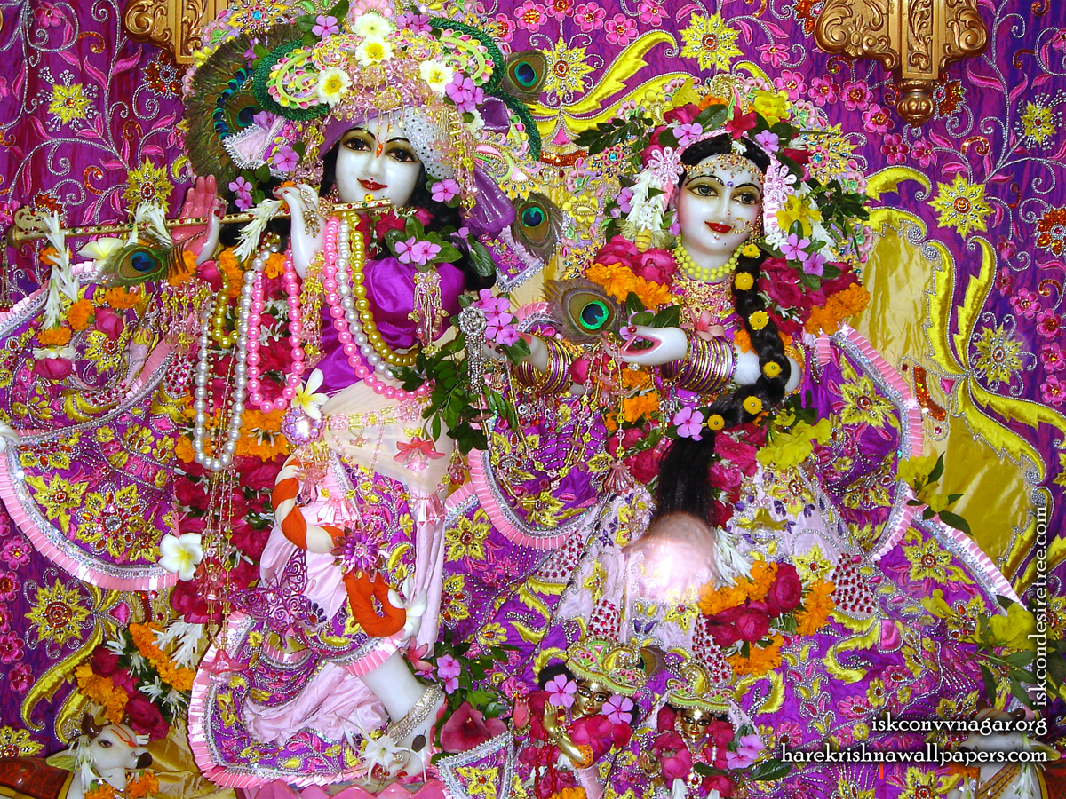 Sri Sri Radha Giridhari Wallpaper (021) Size 1200x900 Download