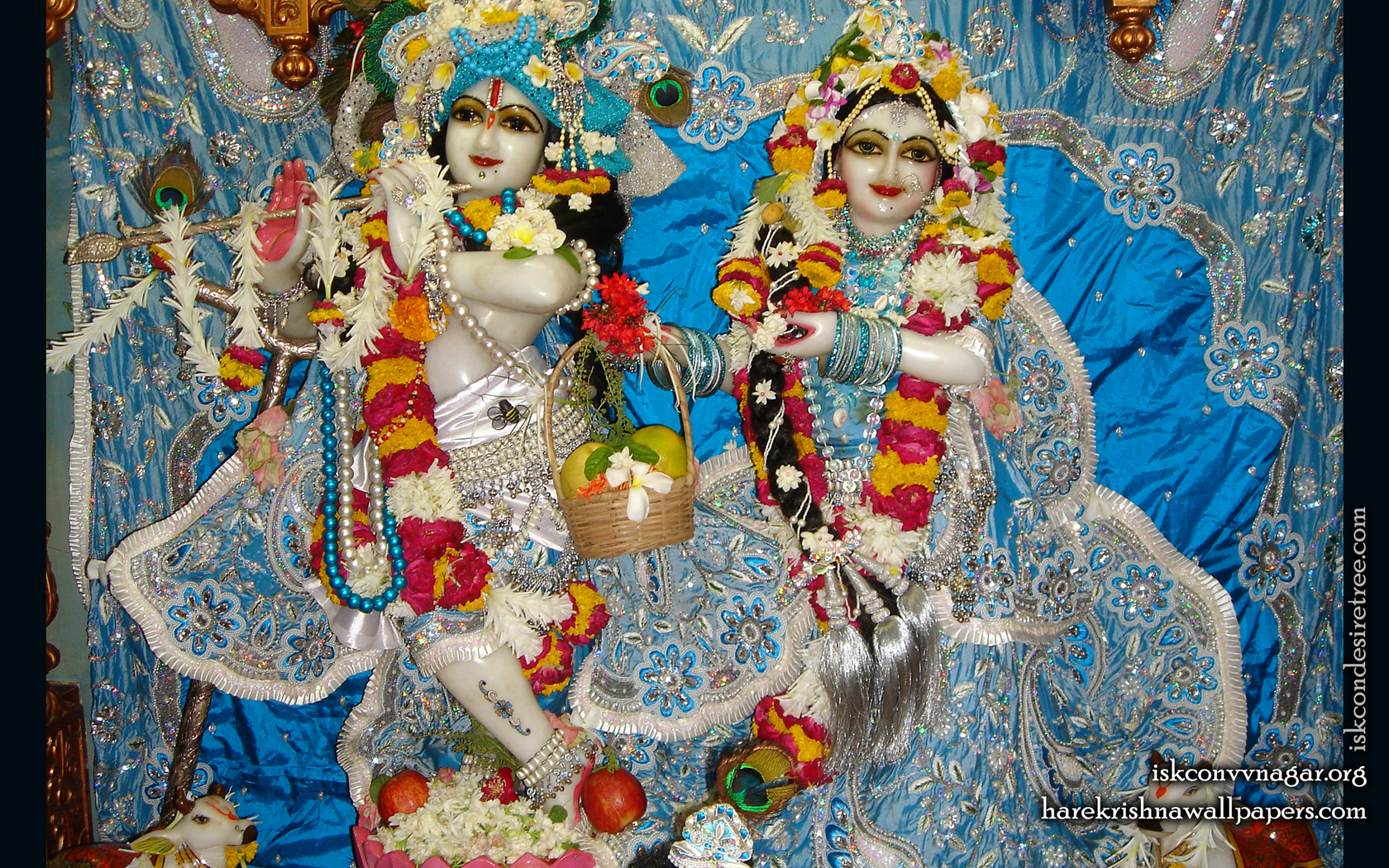 Sri Sri Radha Giridhari Wallpaper (022) Size 1680x1050 Download