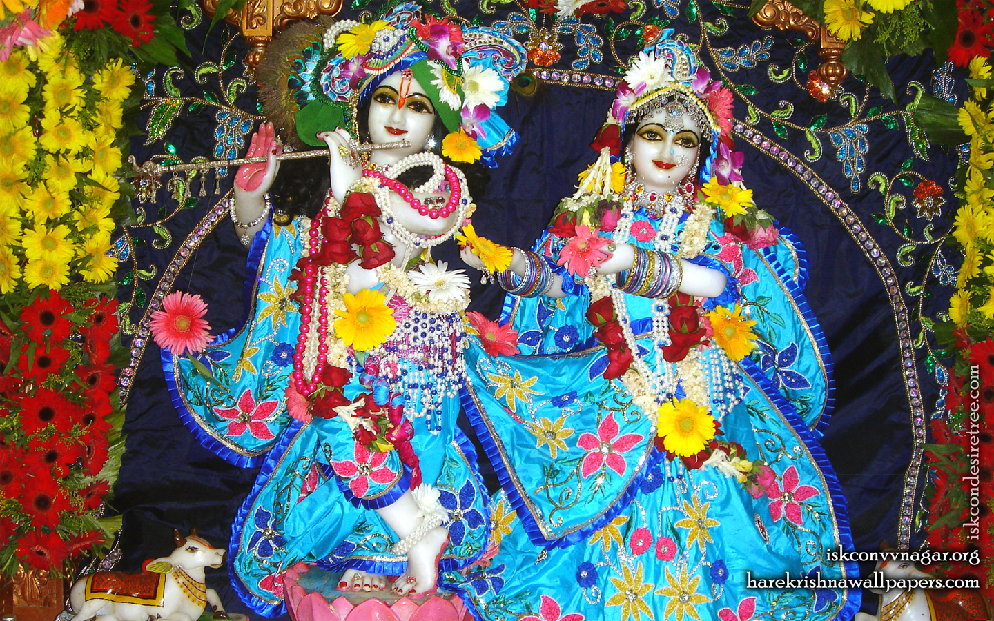 Sri Sri Radha Giridhari Wallpaper (023) Size 1440x900 Download