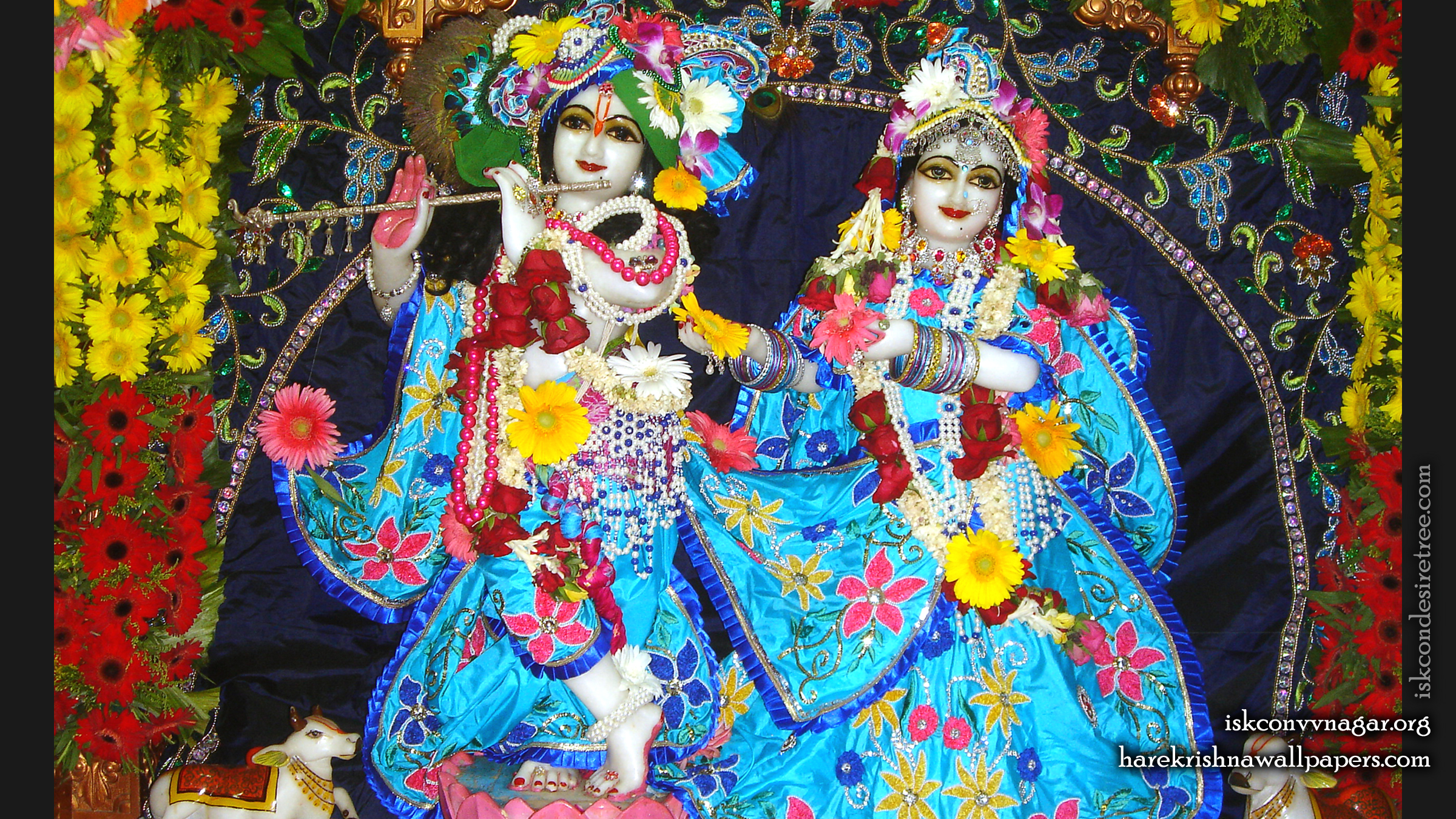 Sri Sri Radha Giridhari Wallpaper (023) Size 2400x1350 Download