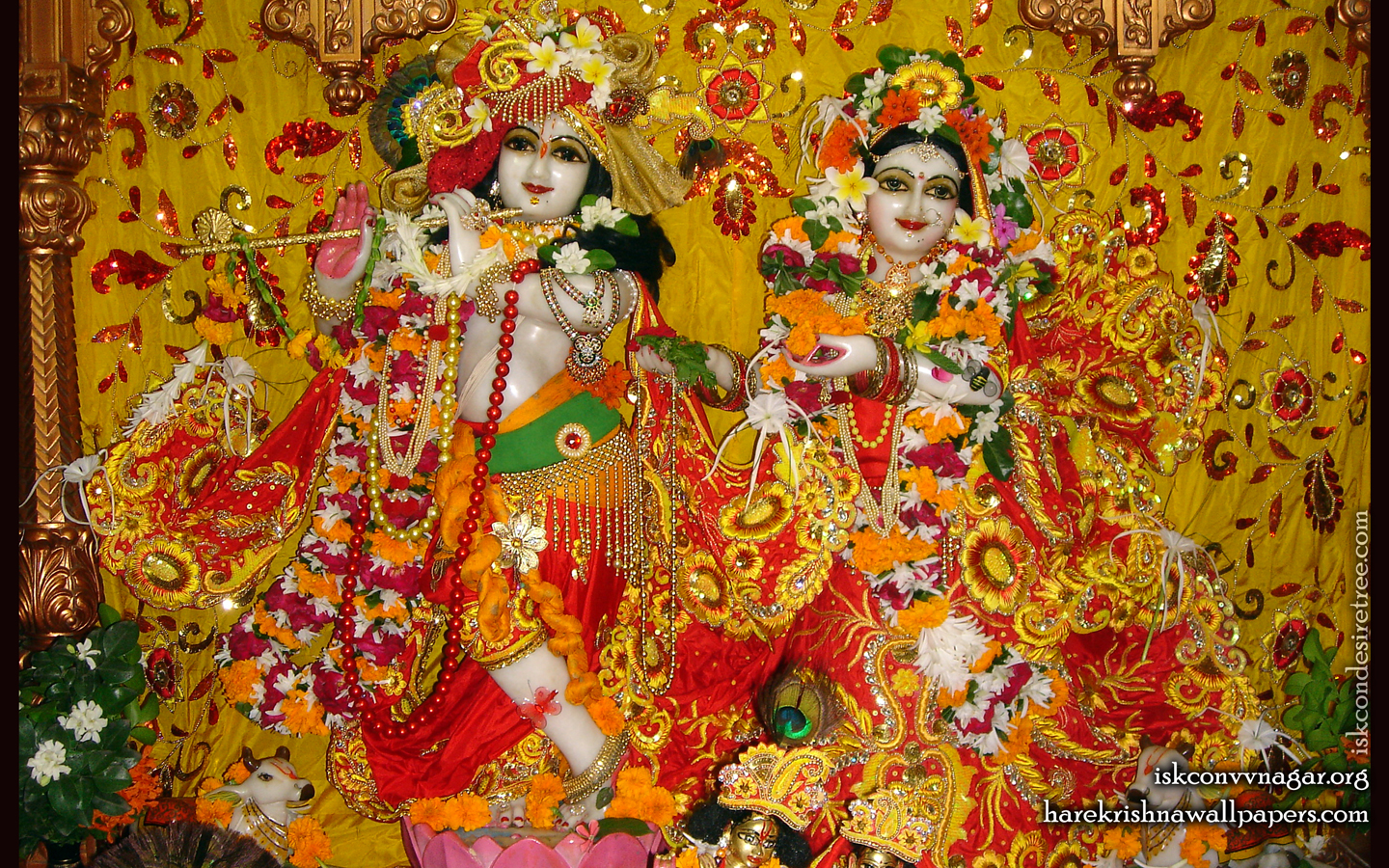 Sri Sri Radha Giridhari Wallpaper (024) Size 1440x900 Download