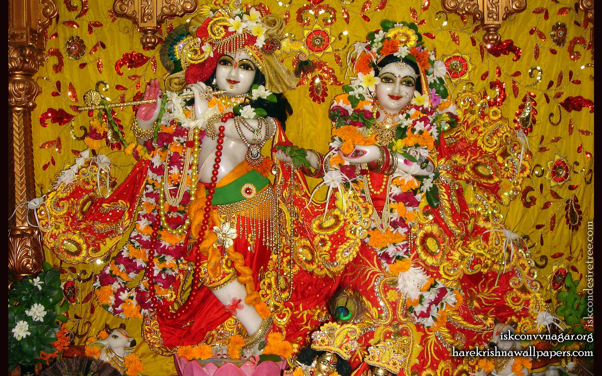Sri Sri Radha Giridhari Wallpaper (024) Size 1920x1200 Download