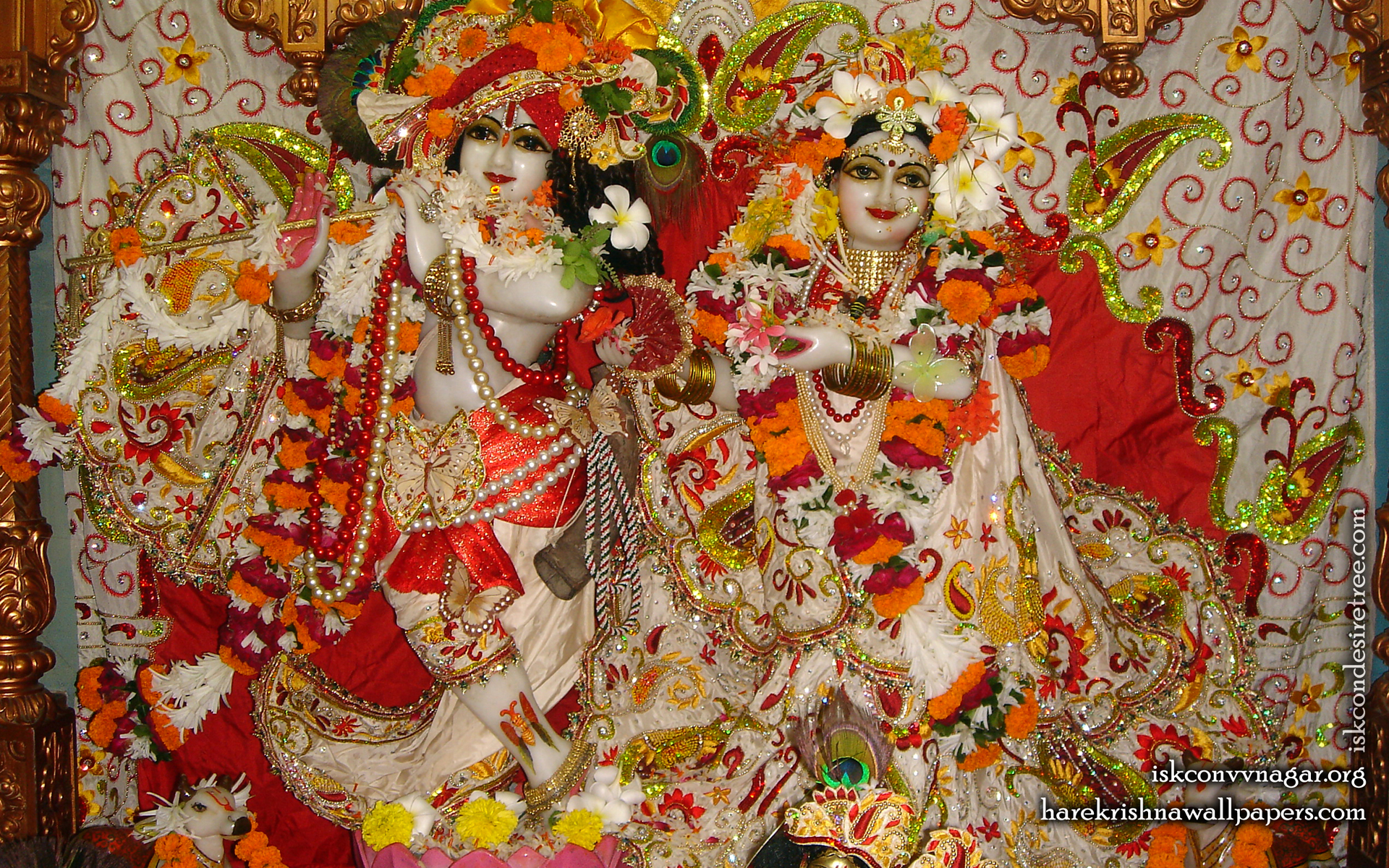 Sri Sri Radha Giridhari Wallpaper (025) Size 1920x1200 Download