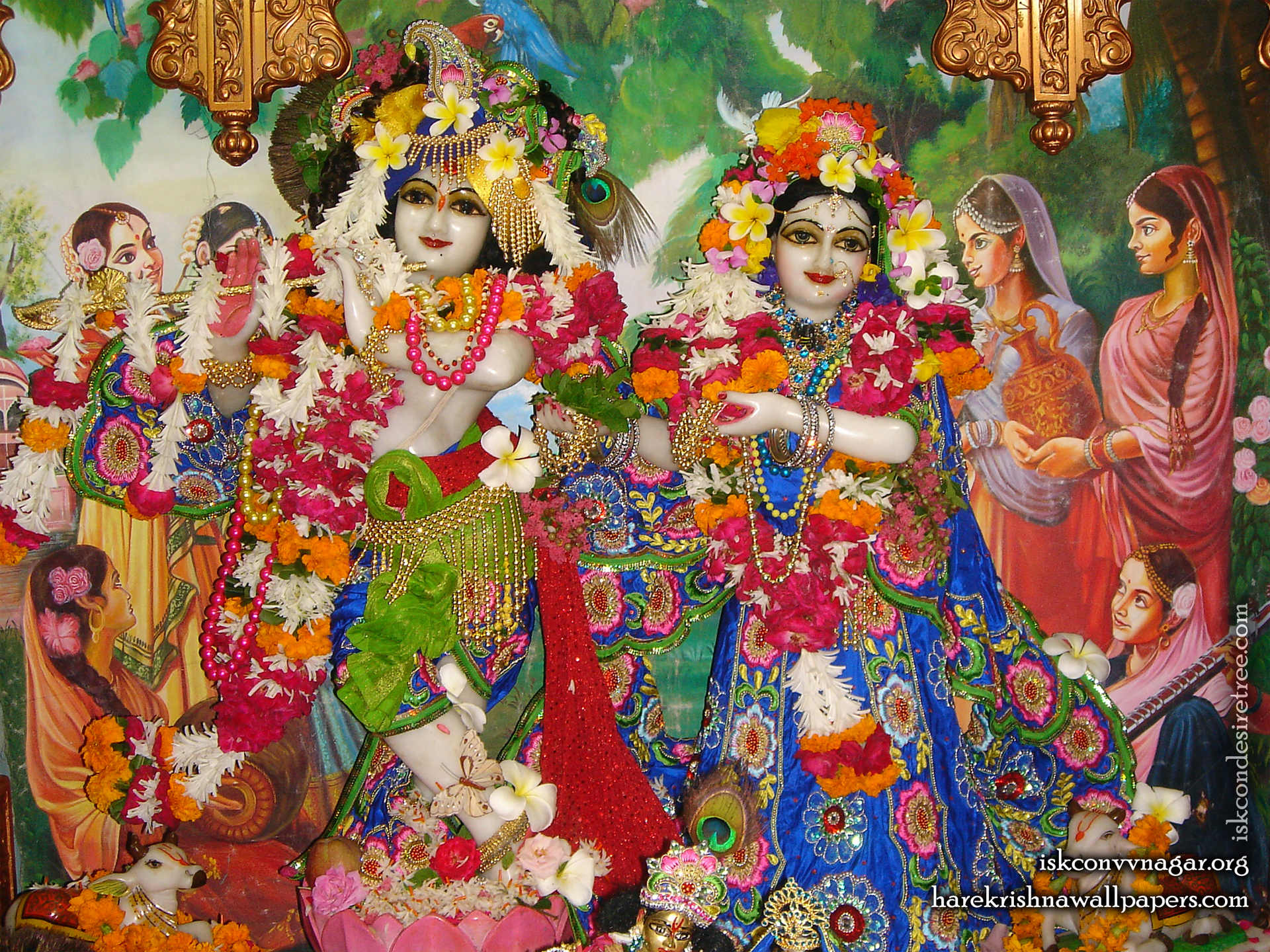Sri Sri Radha Giridhari Wallpaper (026) Size 1920x1440 Download