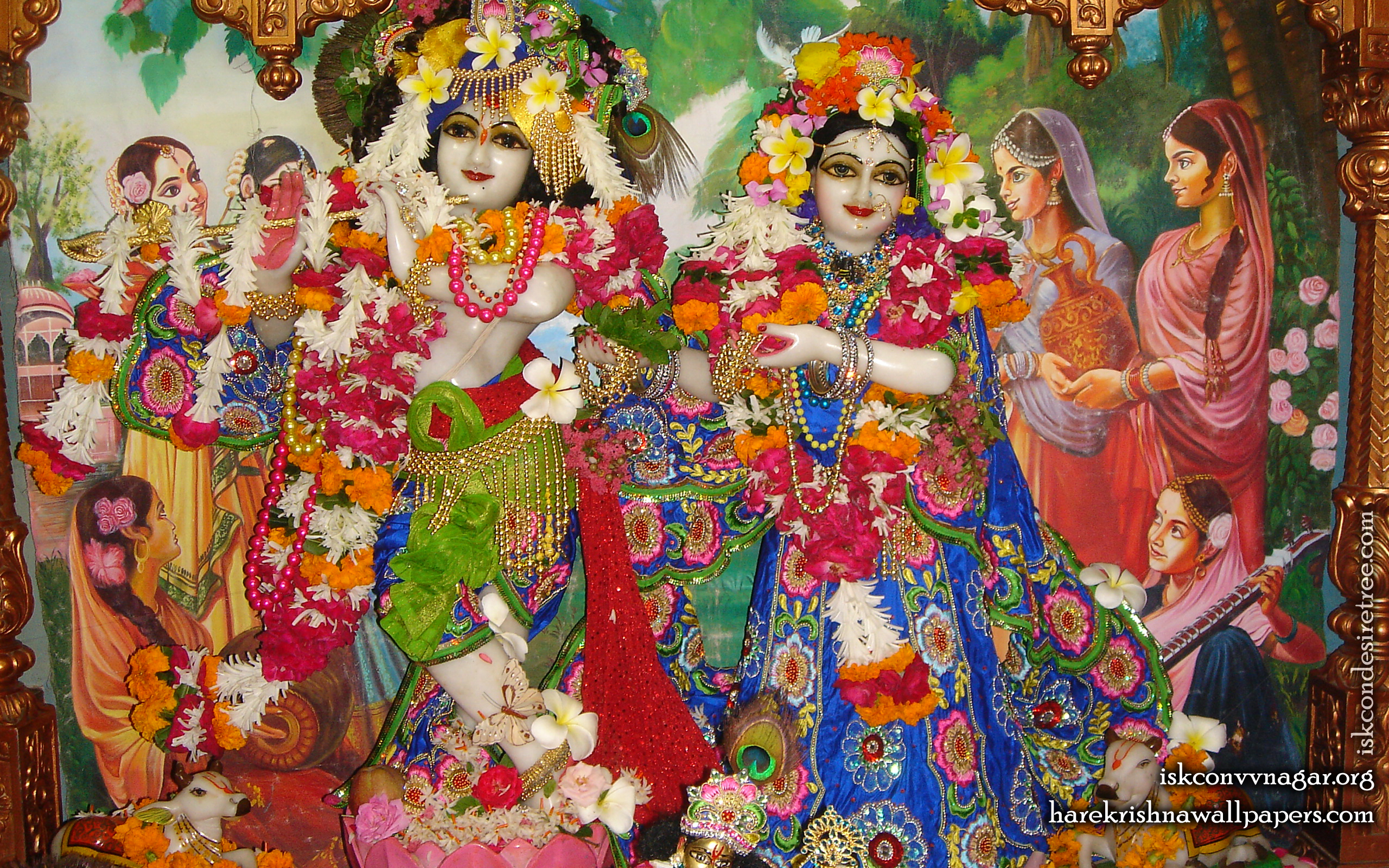 Sri Sri Radha Giridhari Wallpaper (026) Size 2560x1600 Download