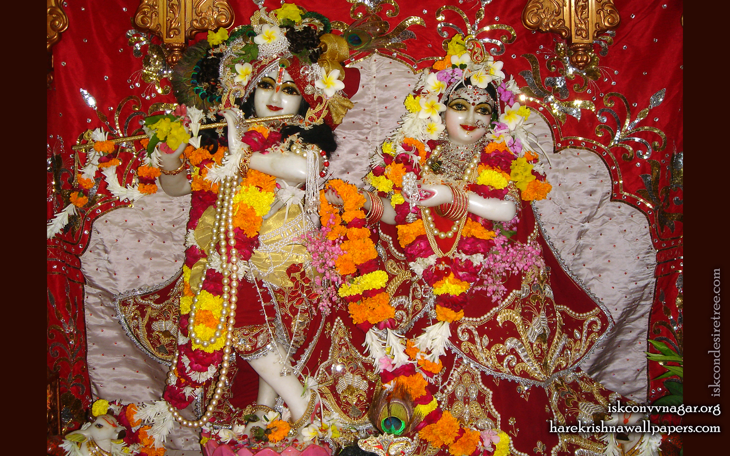 Sri Sri Radha Giridhari Wallpaper (027) Size 1440x900 Download