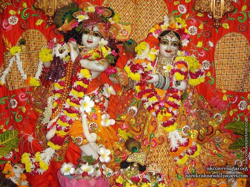 Sri Sri Radha Giridhari Wallpaper (028)