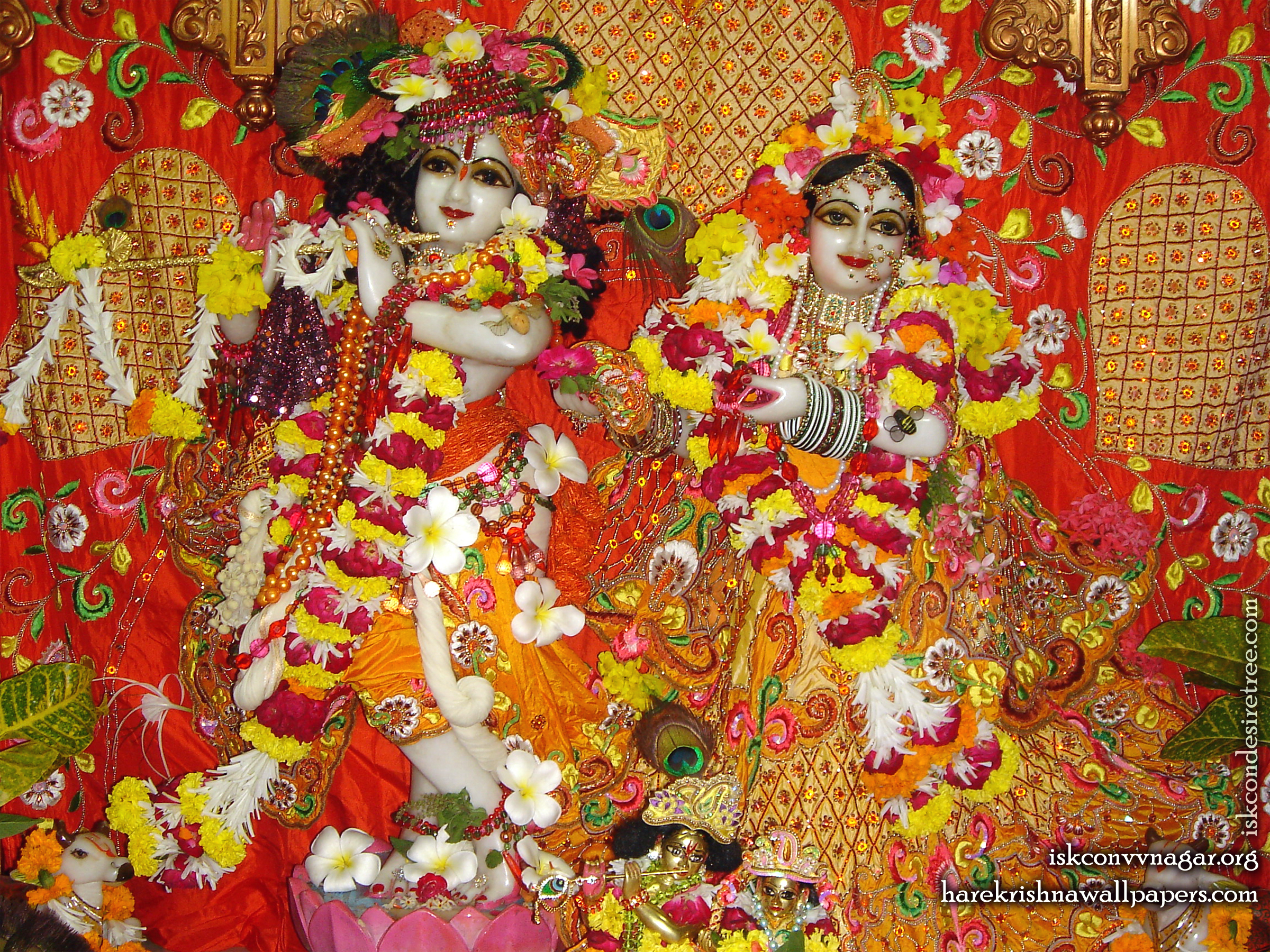 Sri Sri Radha Giridhari Wallpaper (028) Size 2400x1800 Download